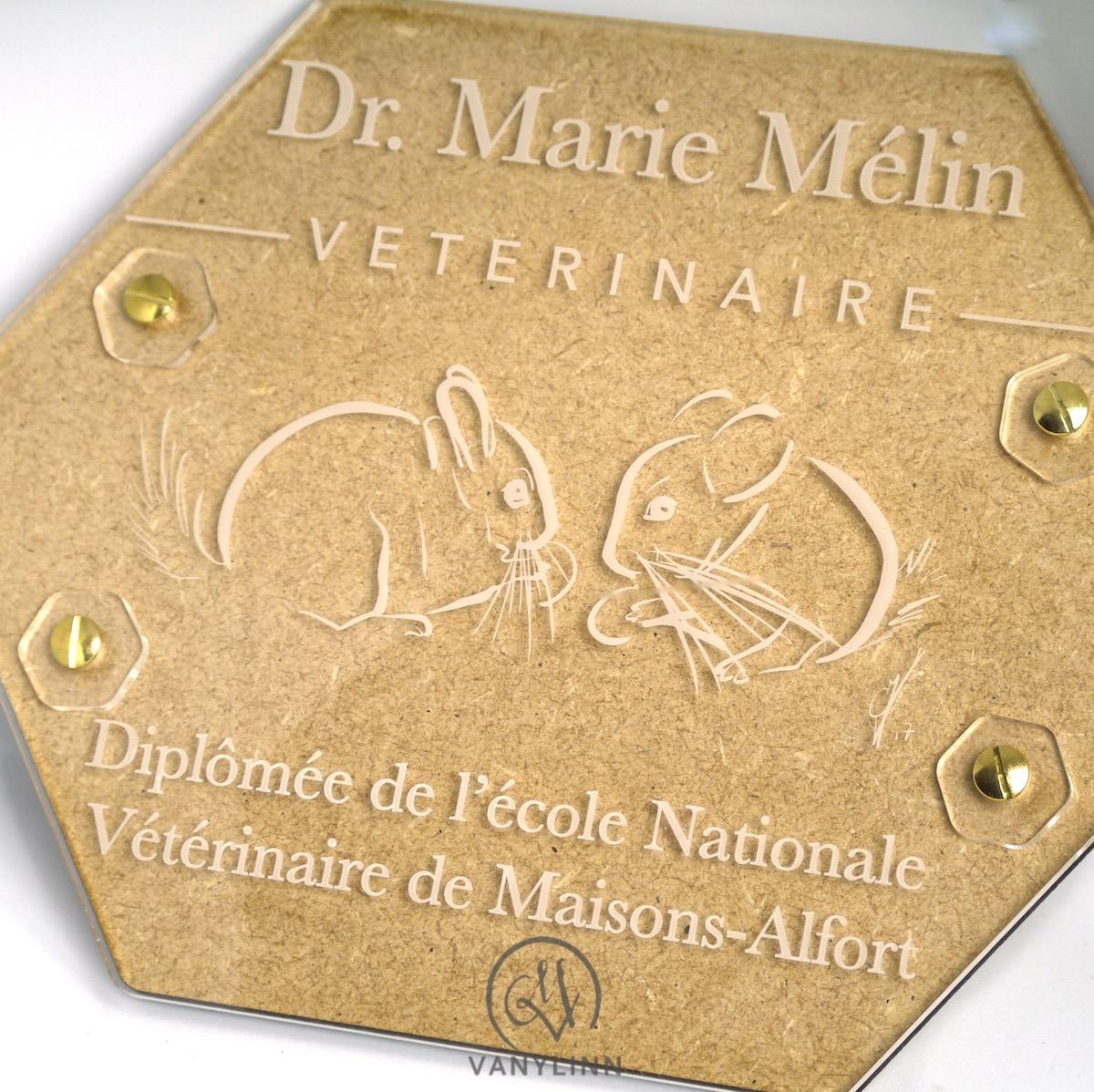 Veterinarian Plaque 3.jpg