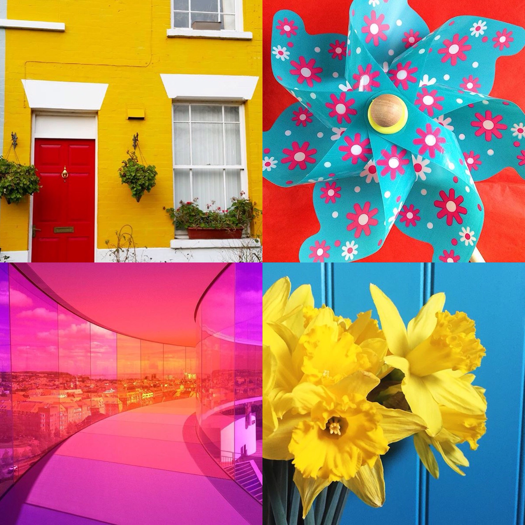 Colour My Every Day Instagram Challenge