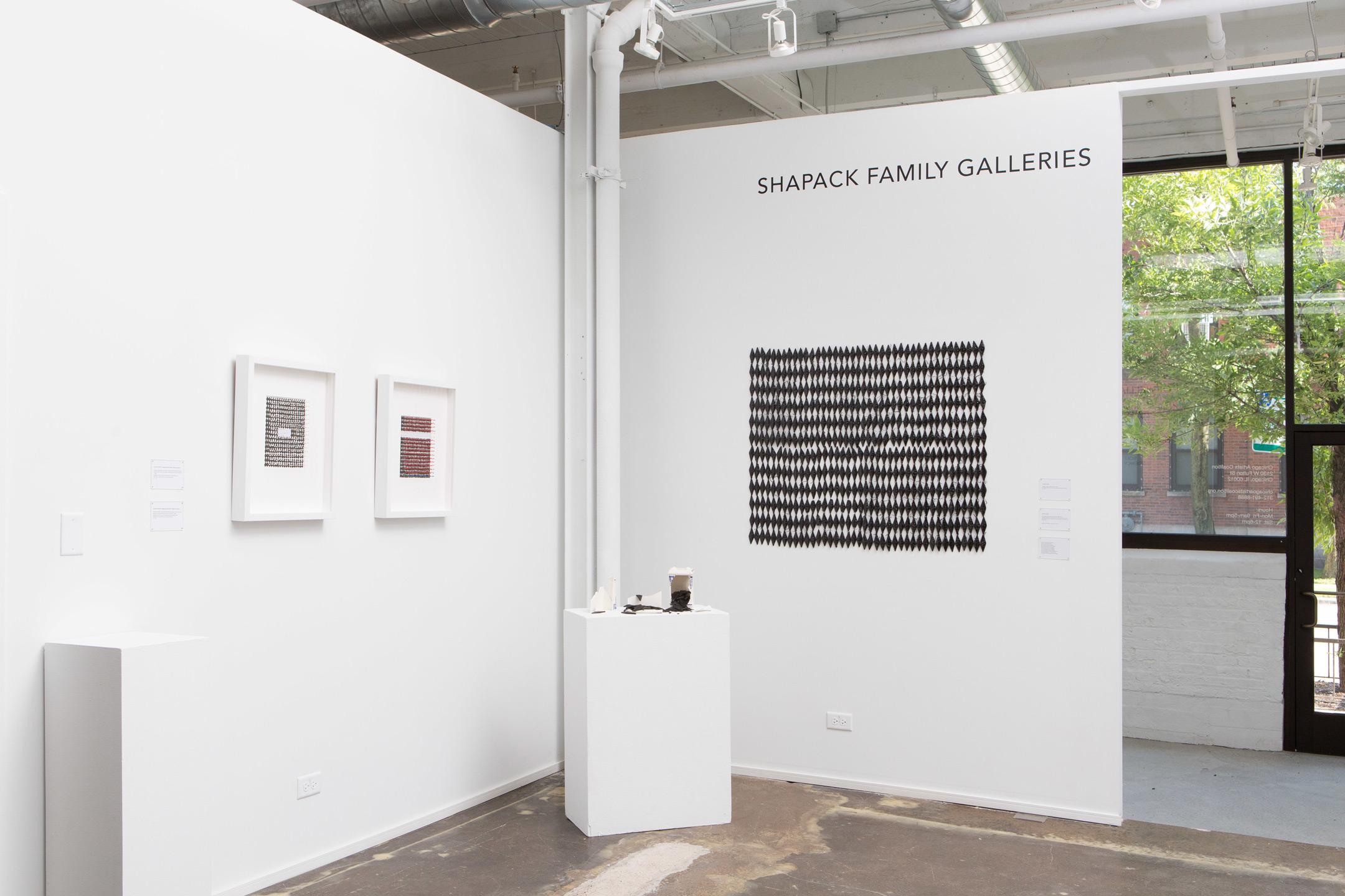 Jacqueline-Surdell-Artist-Installation-Kerk-Straat-Orwellian-Offspring-Work-01.jpg