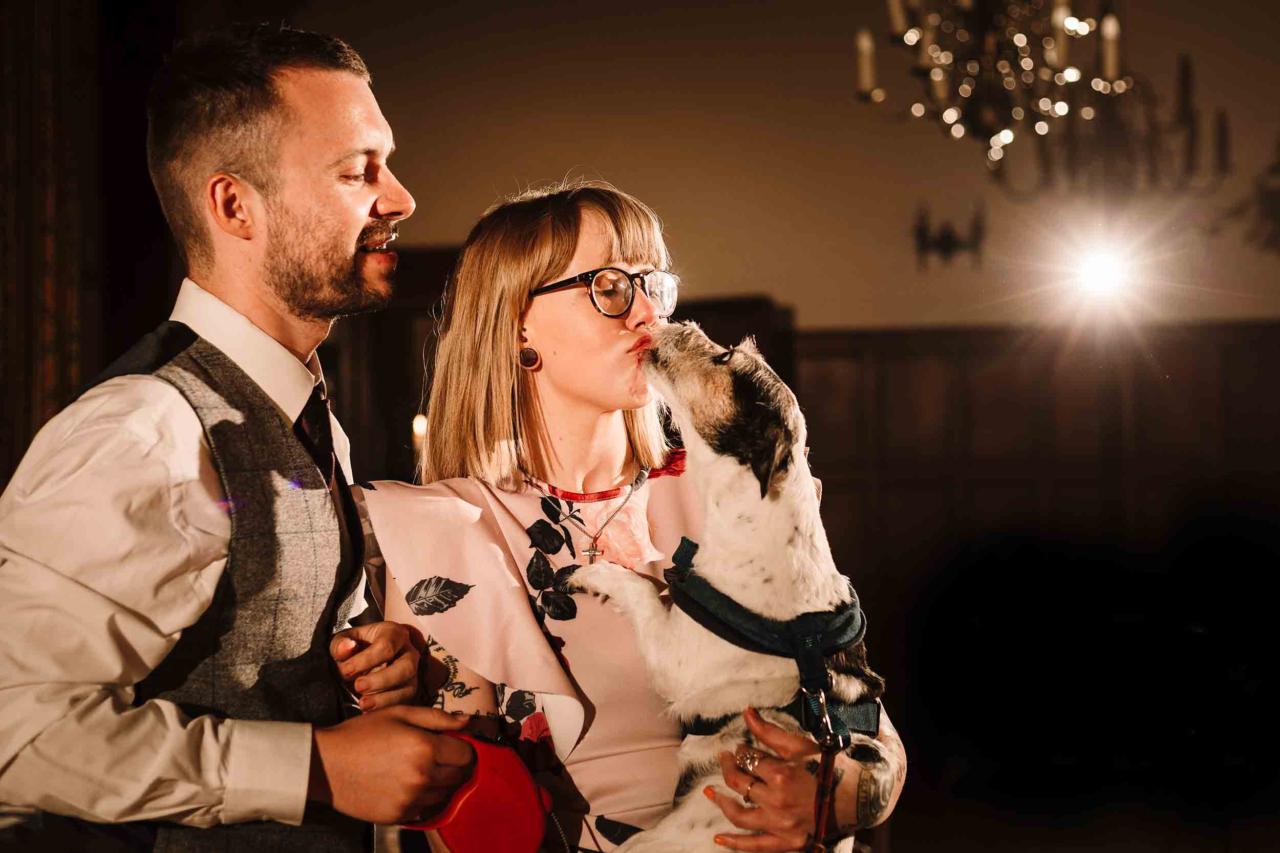 wedding guests dancing with a dog