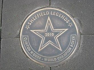 330px-Sheffield_Legends_Clinton_Woods.jpg