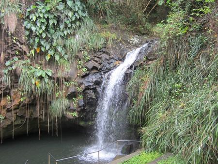 Bob-Desautels-Locavores-Digest-Grenada-3.jpg