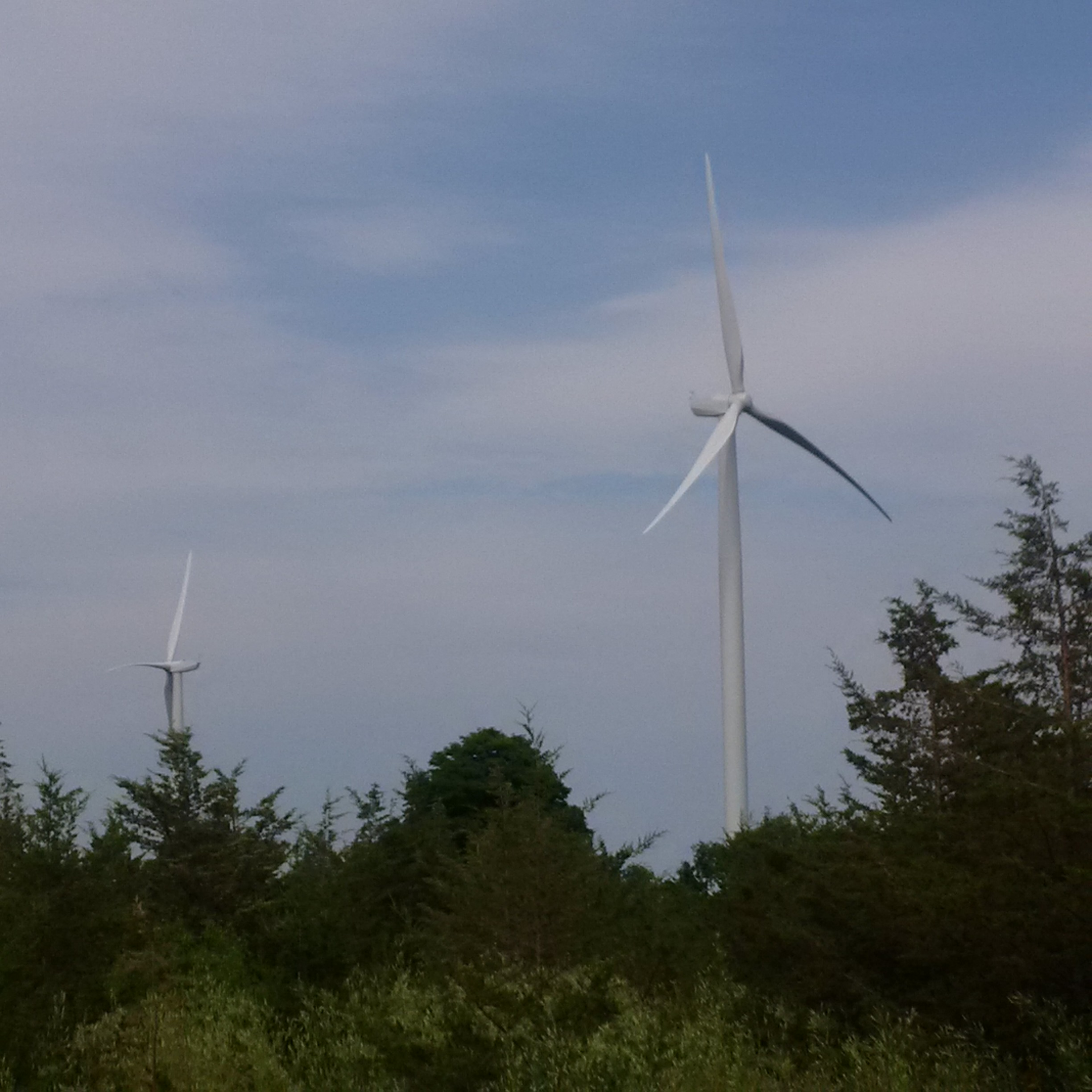 Brand new windmills turned off by Doug Ford