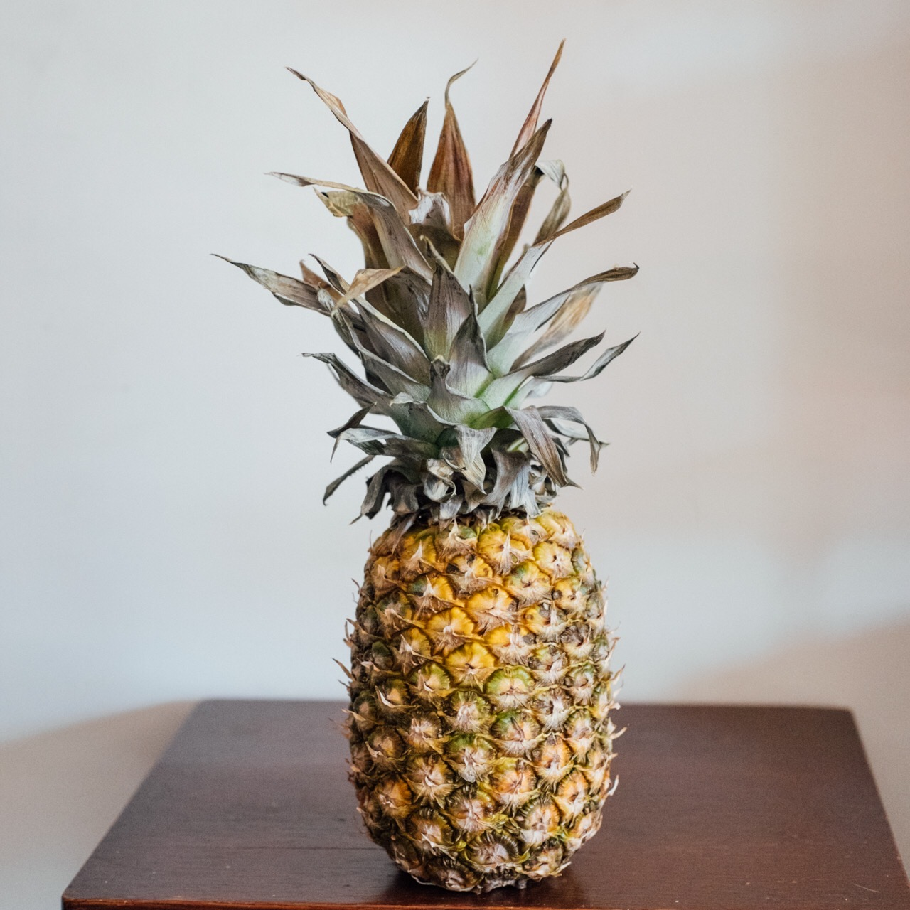 pineapple north project