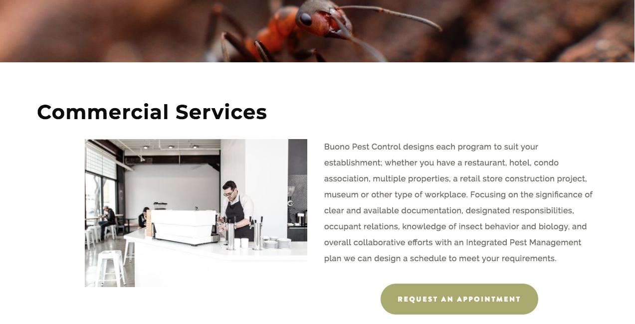 Buono Pest Control Website After Commercial Services Page.png
