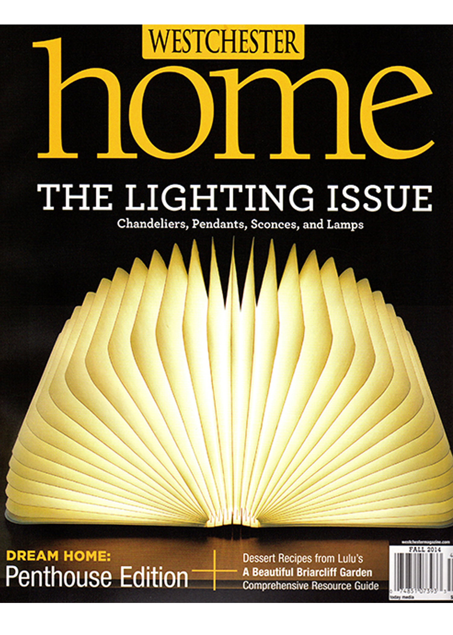 Giancarlo Studio Furniture Westchester Home Magazine Feature.jpg