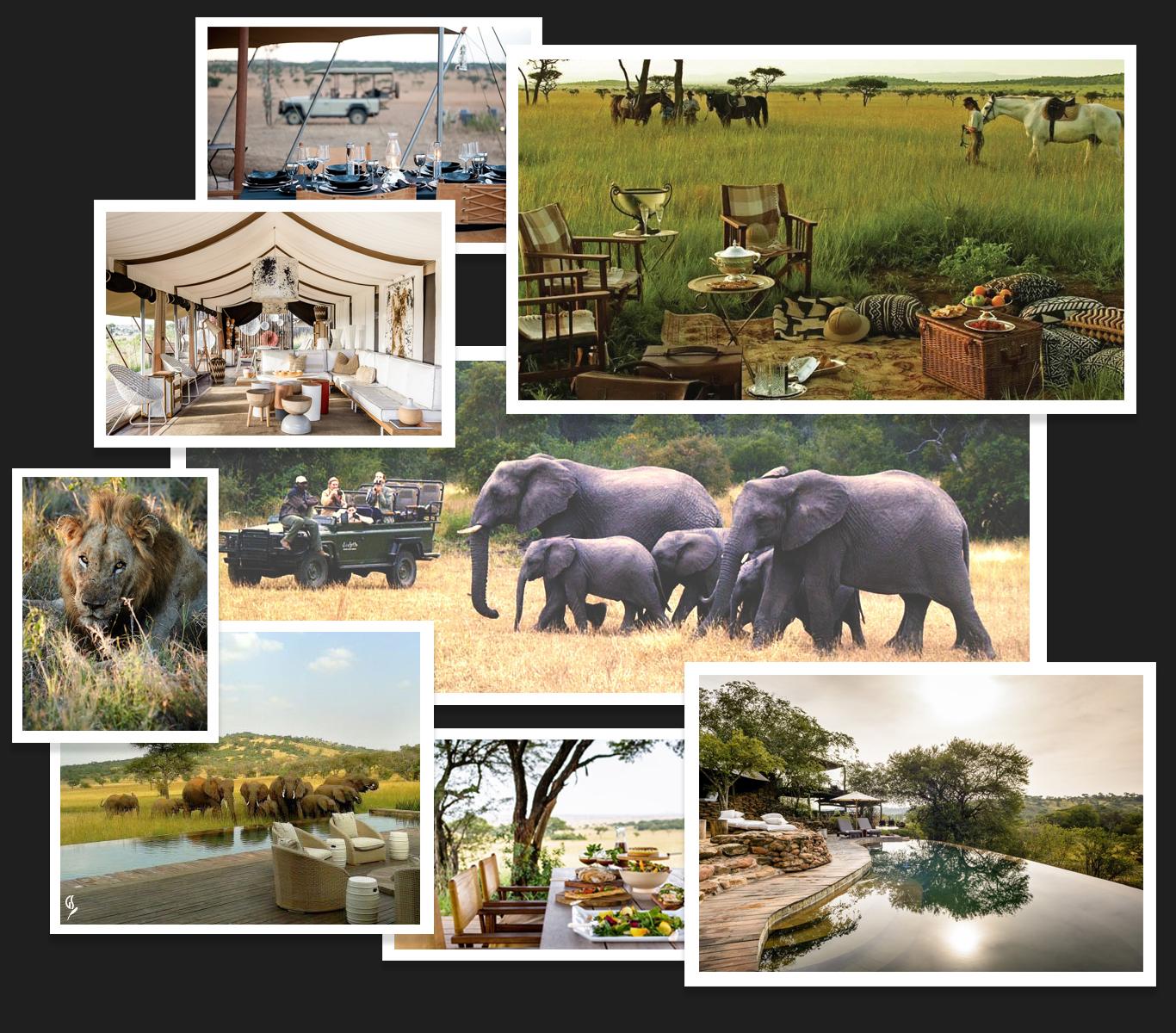 creations-luxury-travel-africa-safari.jpg