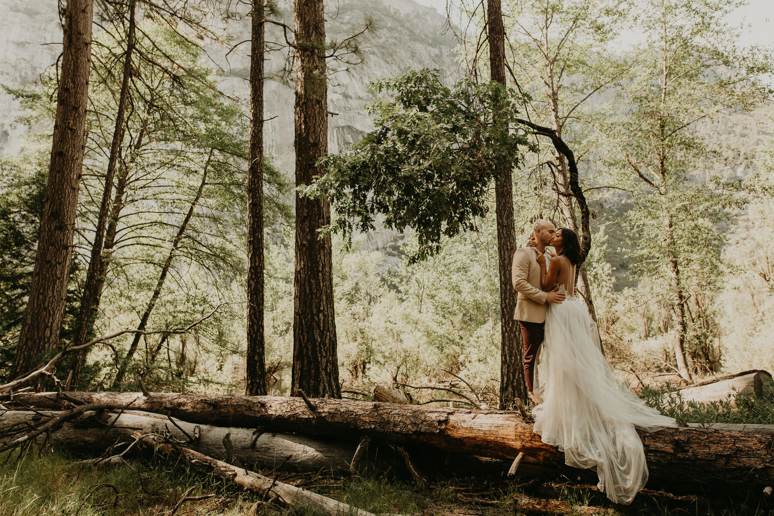 ready to start dreaming up your unique wedding day ?  - get in touch with me