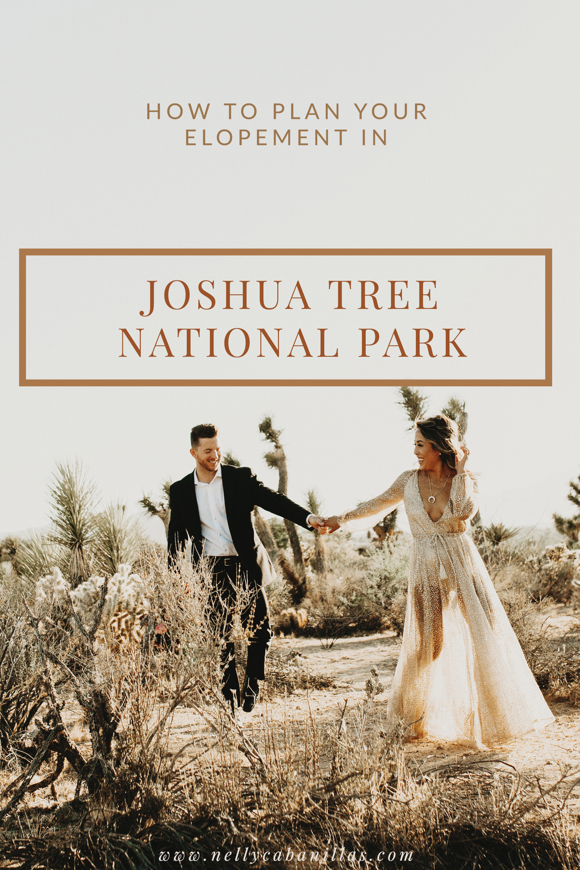 JoshuaTree_Elopement.jpg