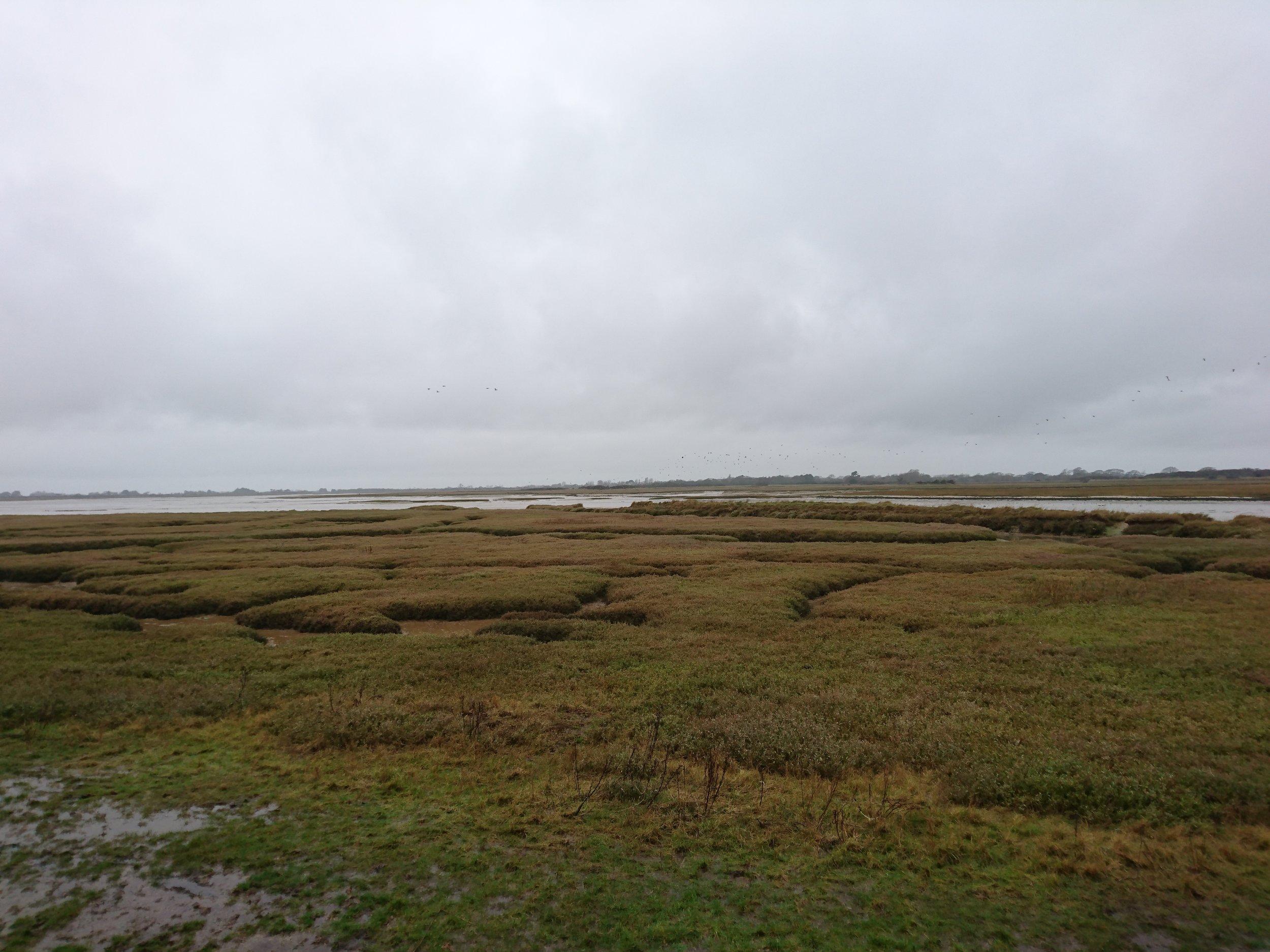 Pagham Bay