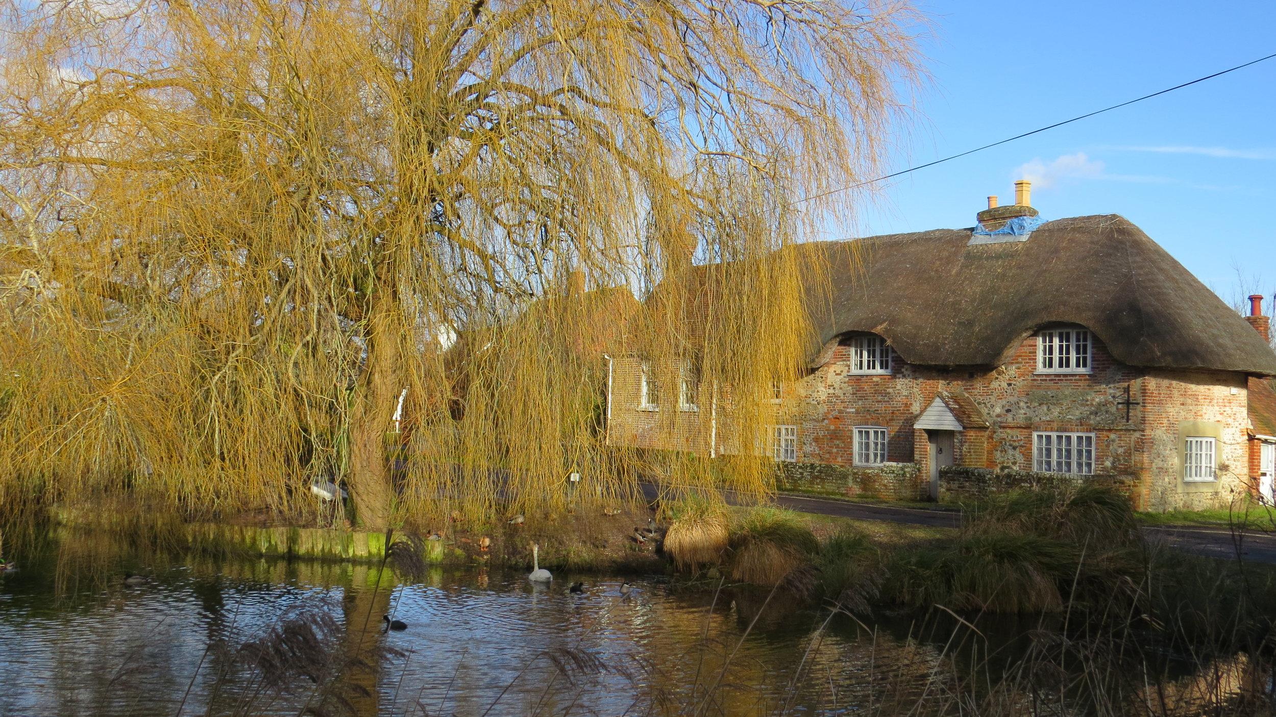 Fishbourne Mill Pond