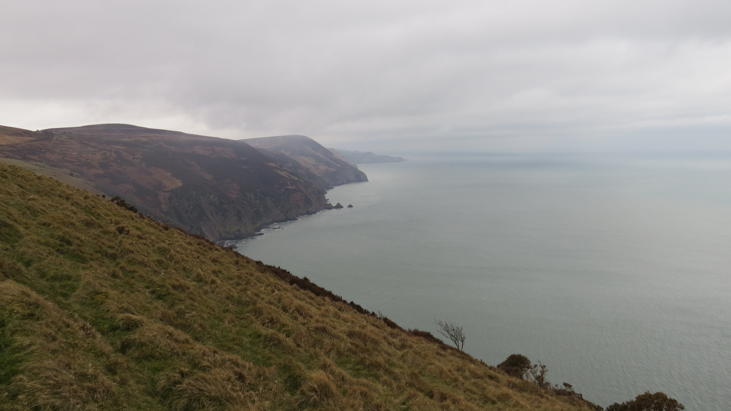 View from East Cleave