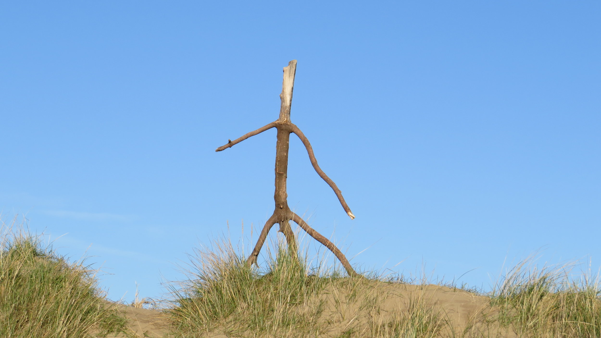 Person Shaped Stick