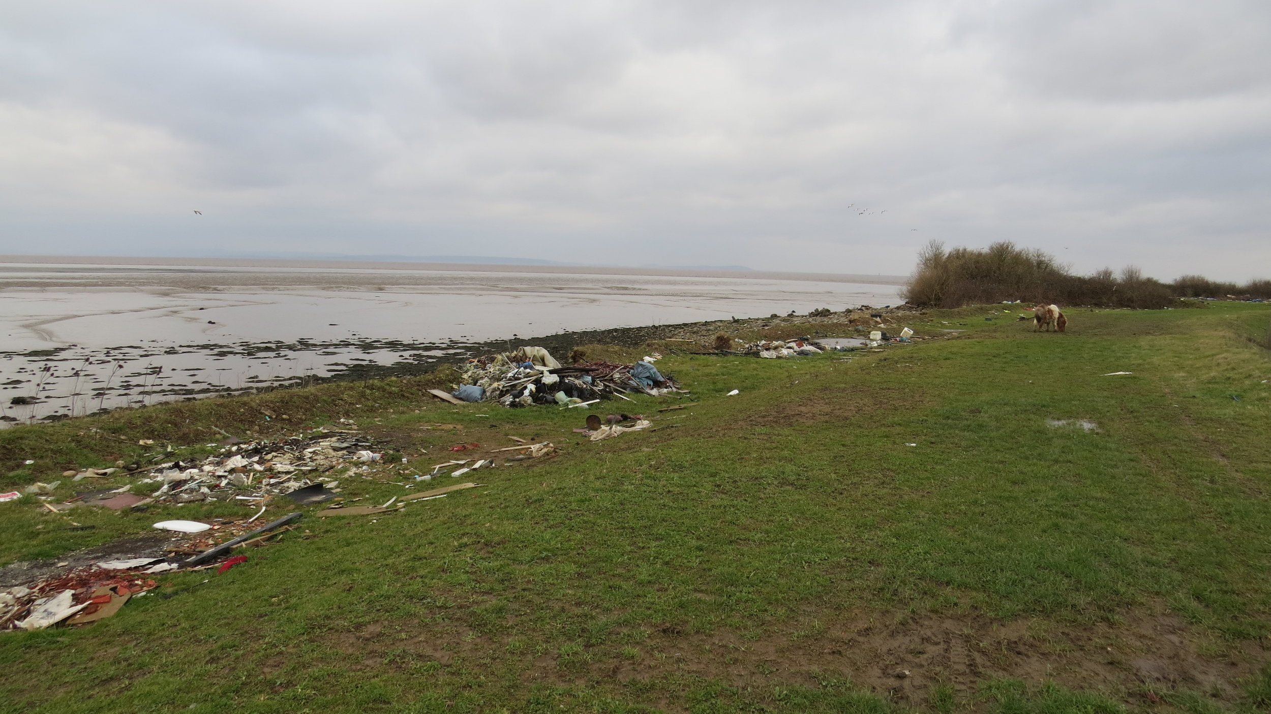 Beginning of Fly Tipping