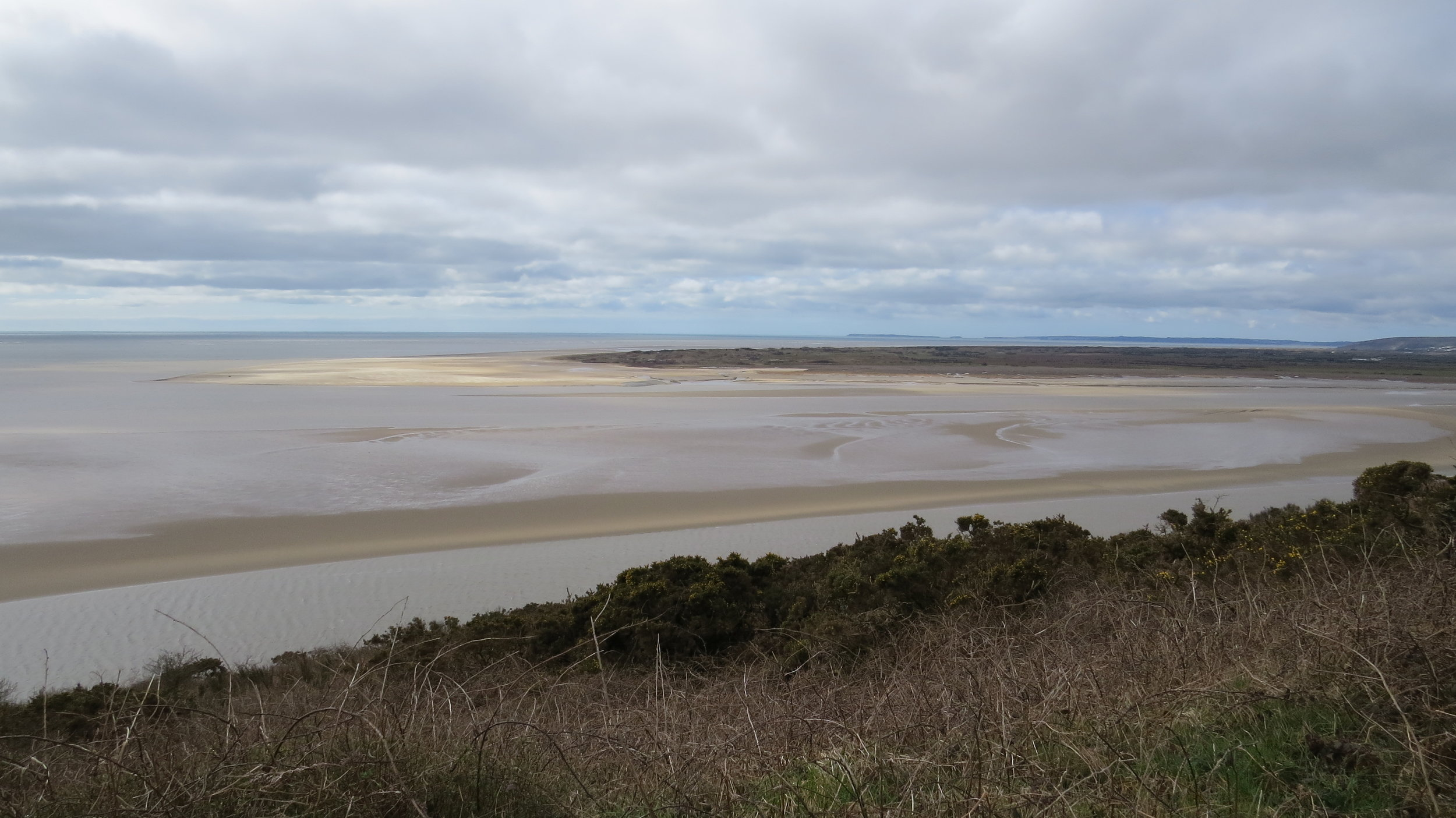 Looking Towards Laugharne Marshes