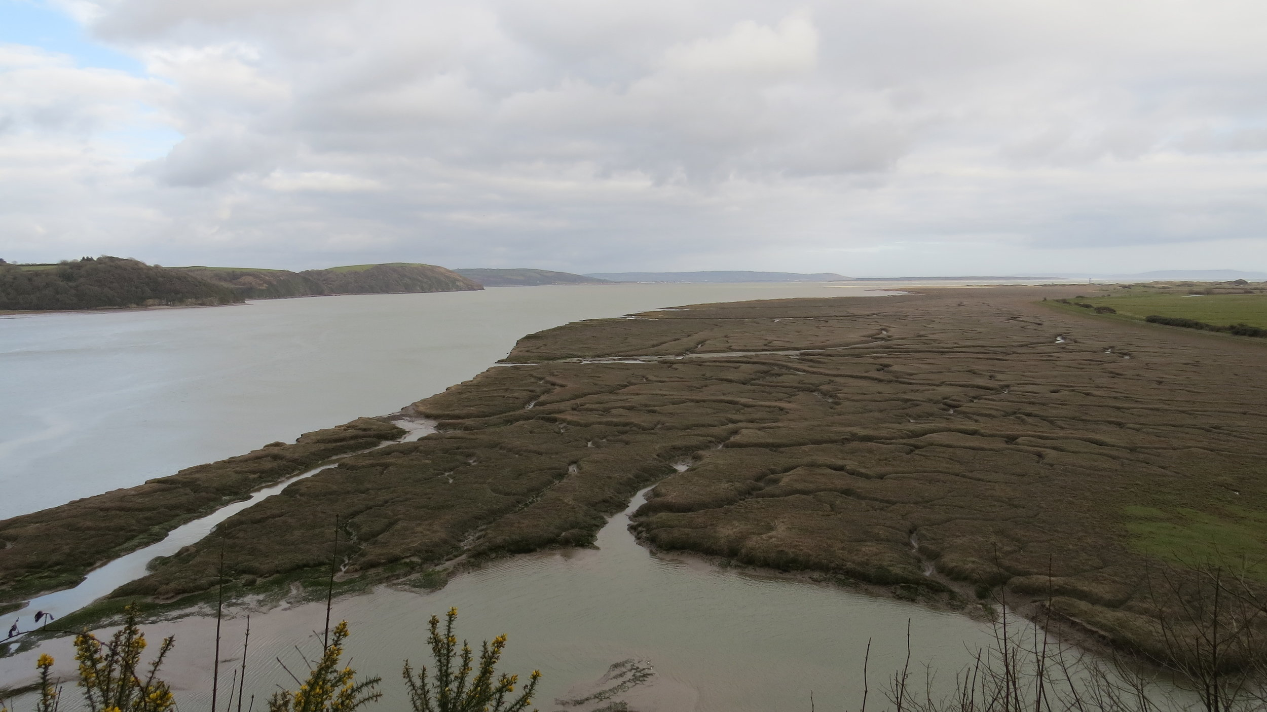 Laugharne Muds/Marshes