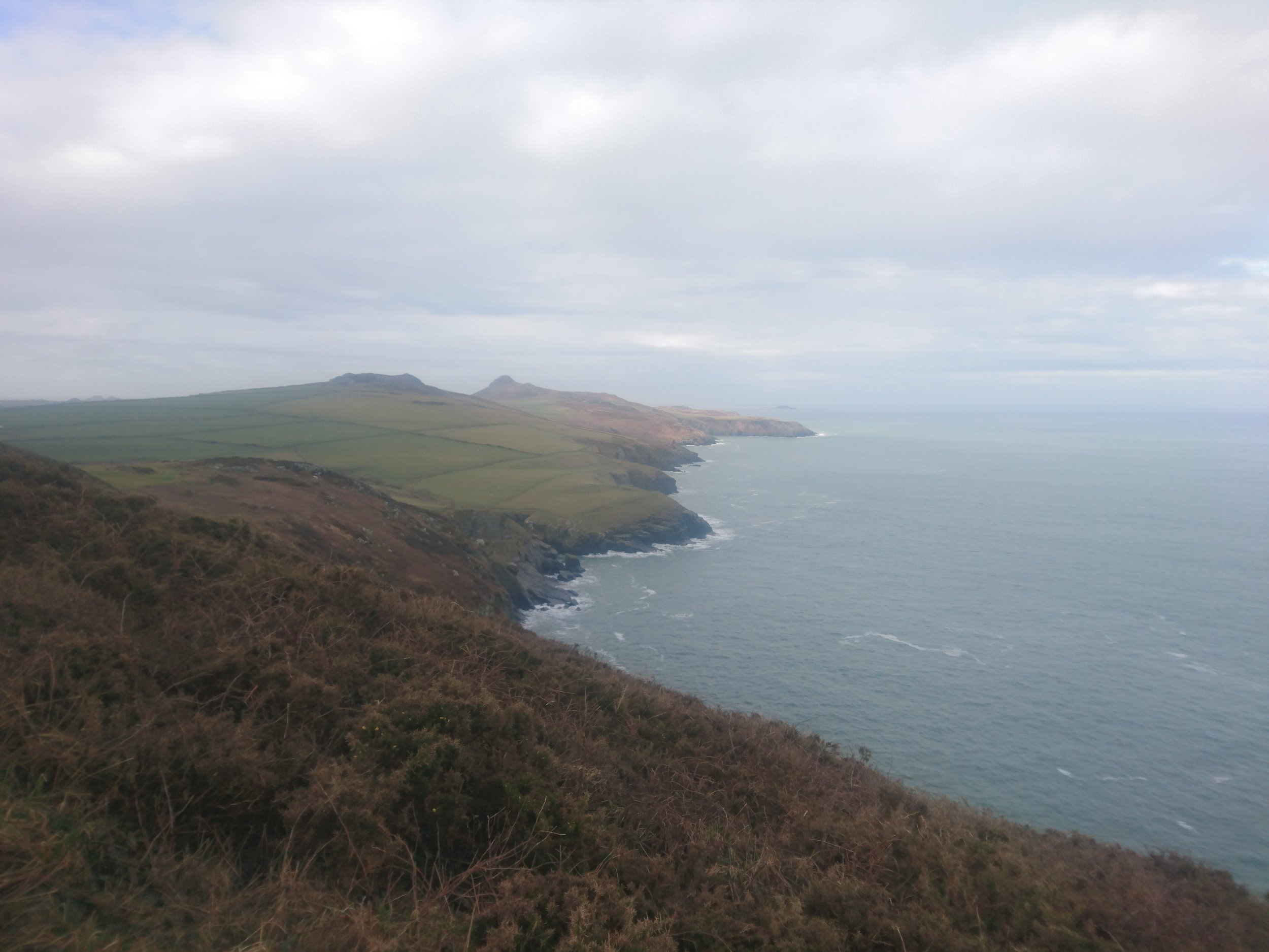 Looking back to St Davids Head