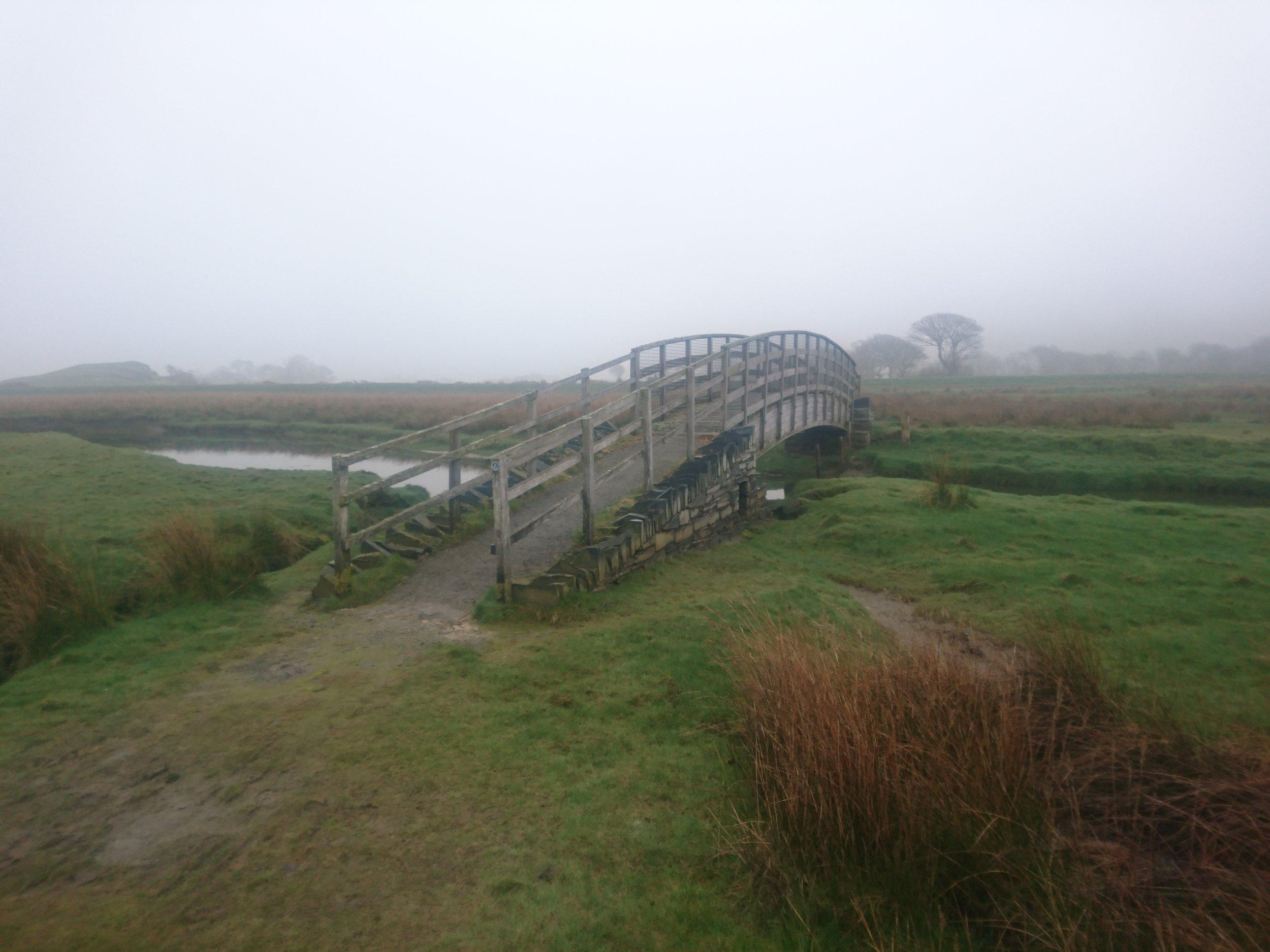 Marsh Footbridge