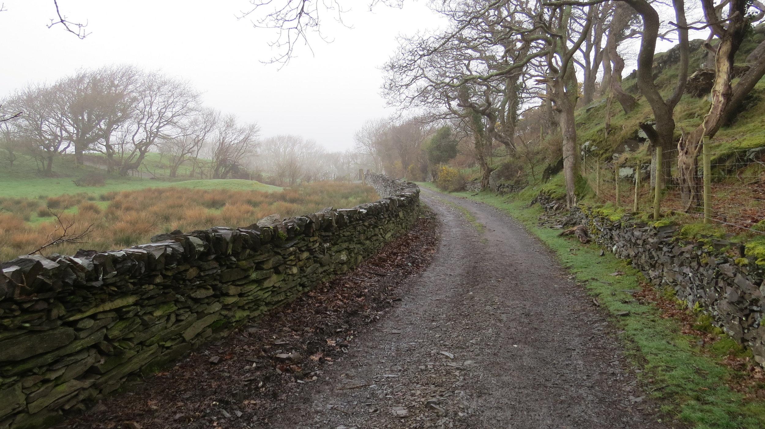 Scenic Track
