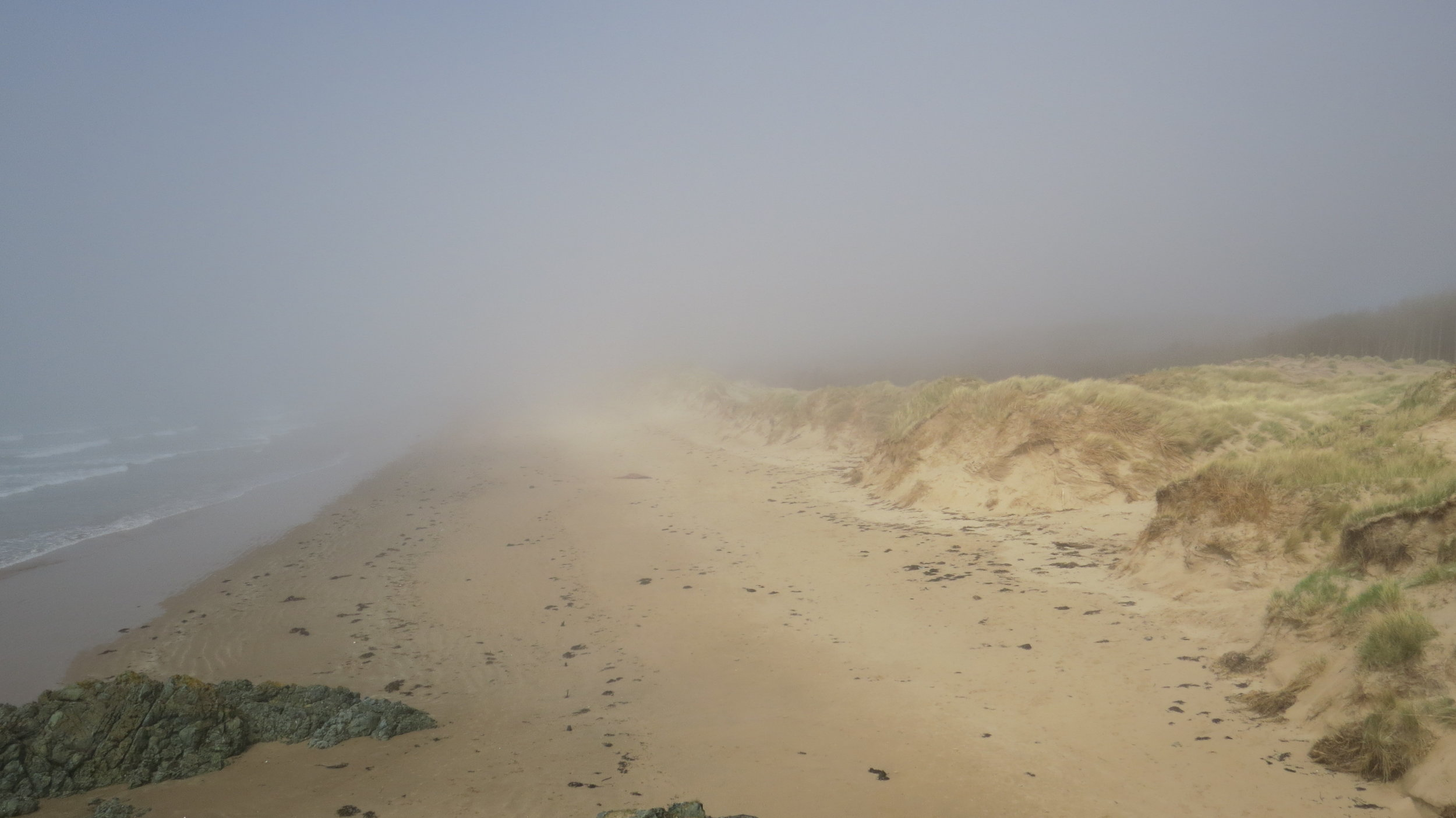 Mist Traeth Penrhos