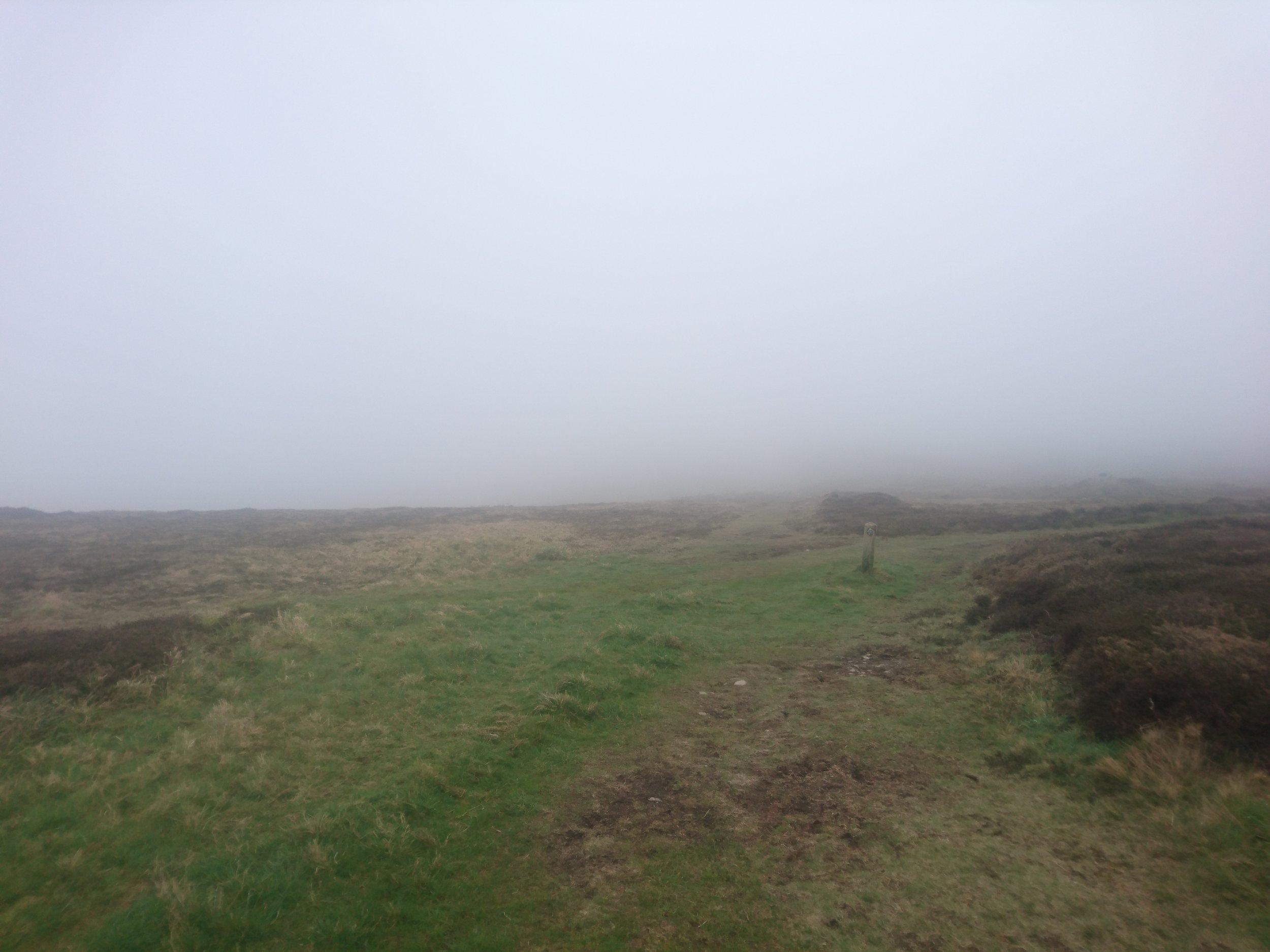 Foggy Paths