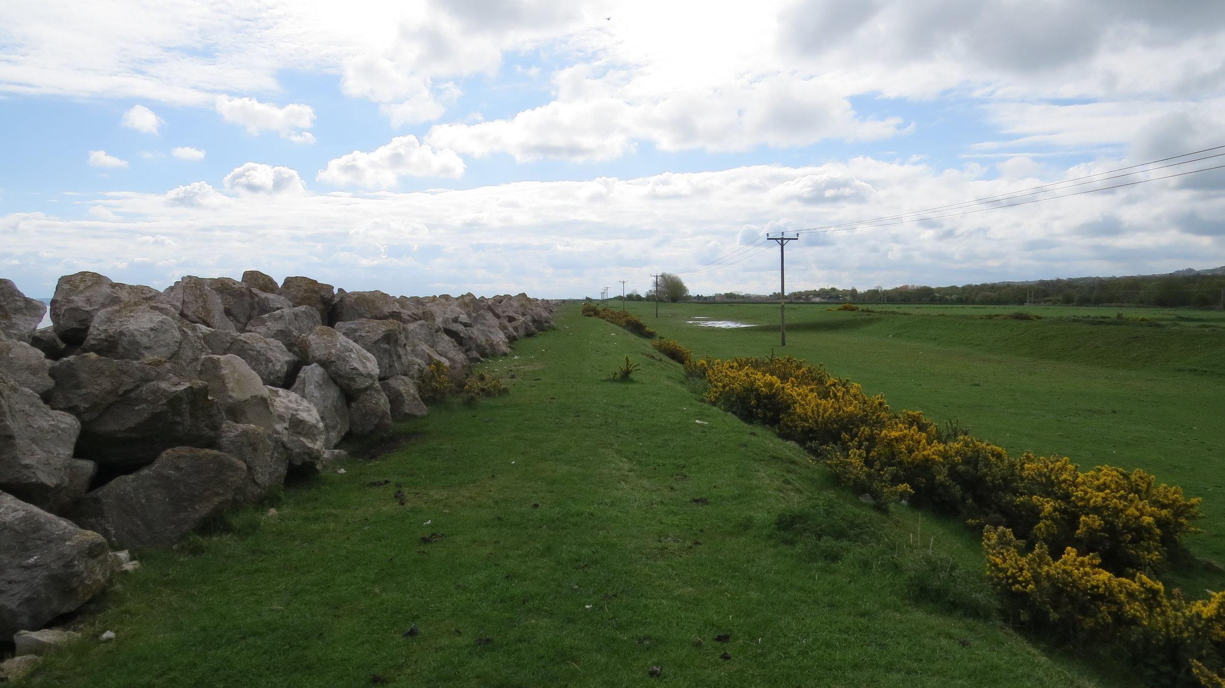 Embankment by 'The Marsh'