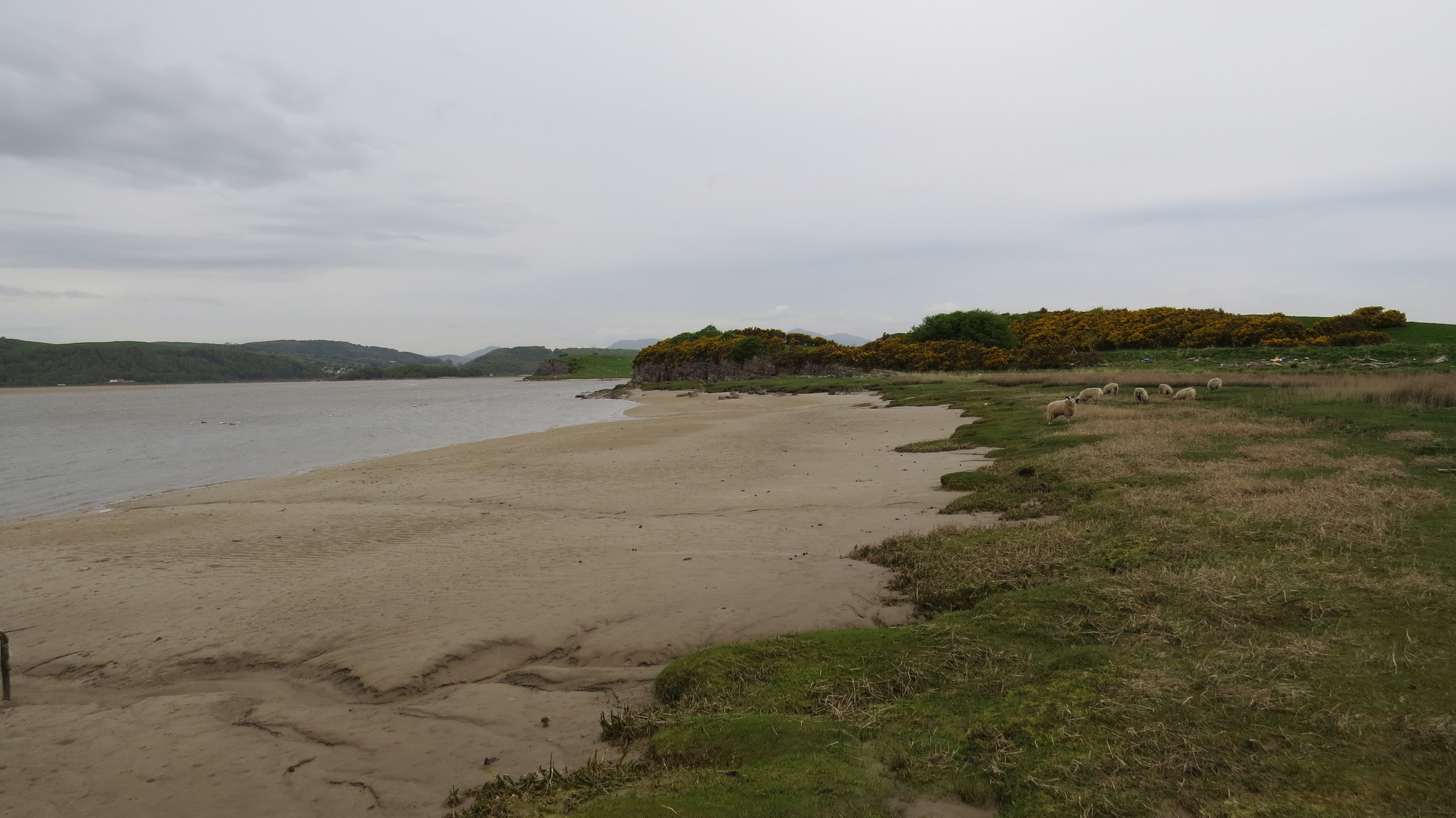 Lower Frith Sands