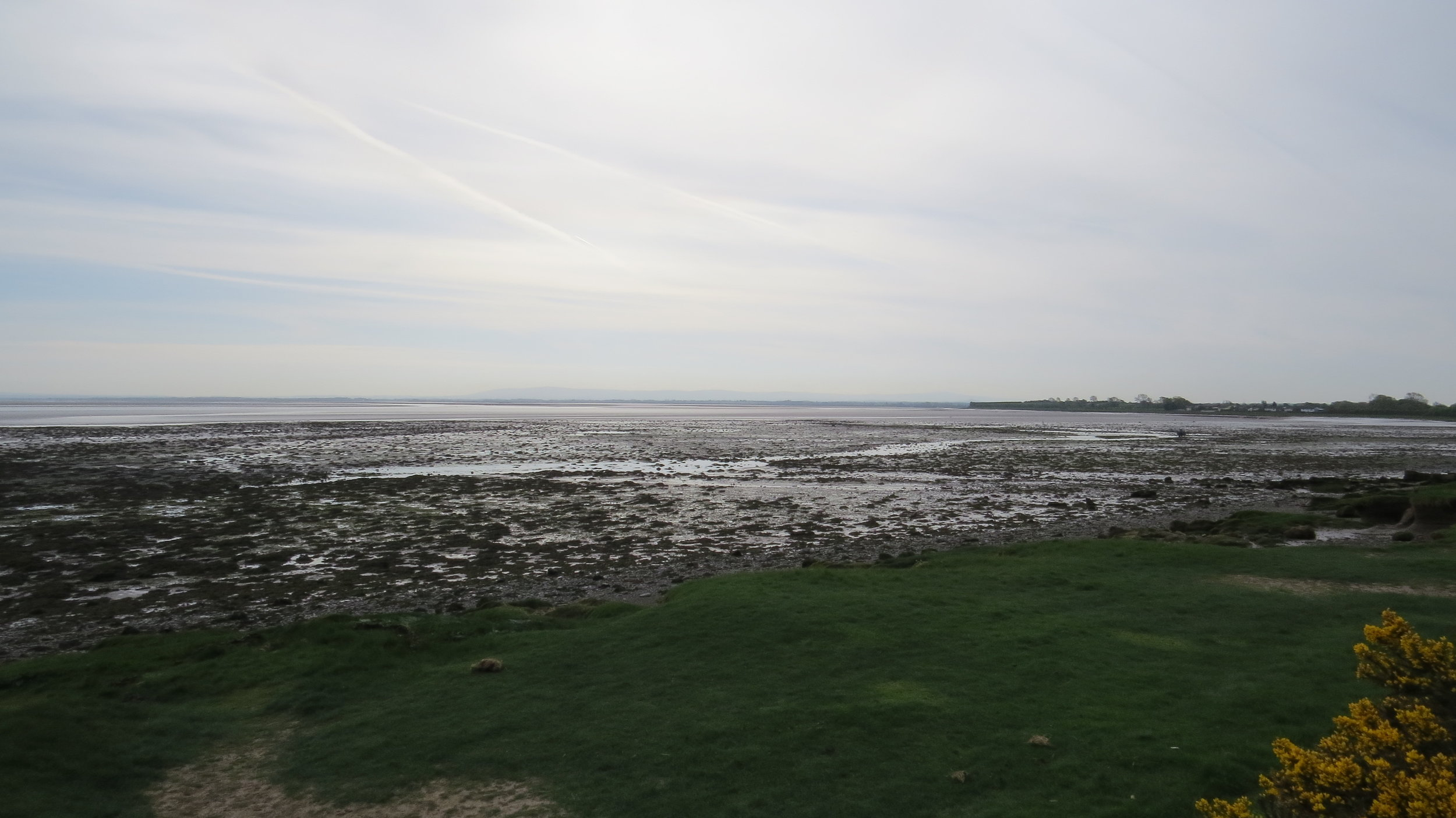 Bowness Marsh