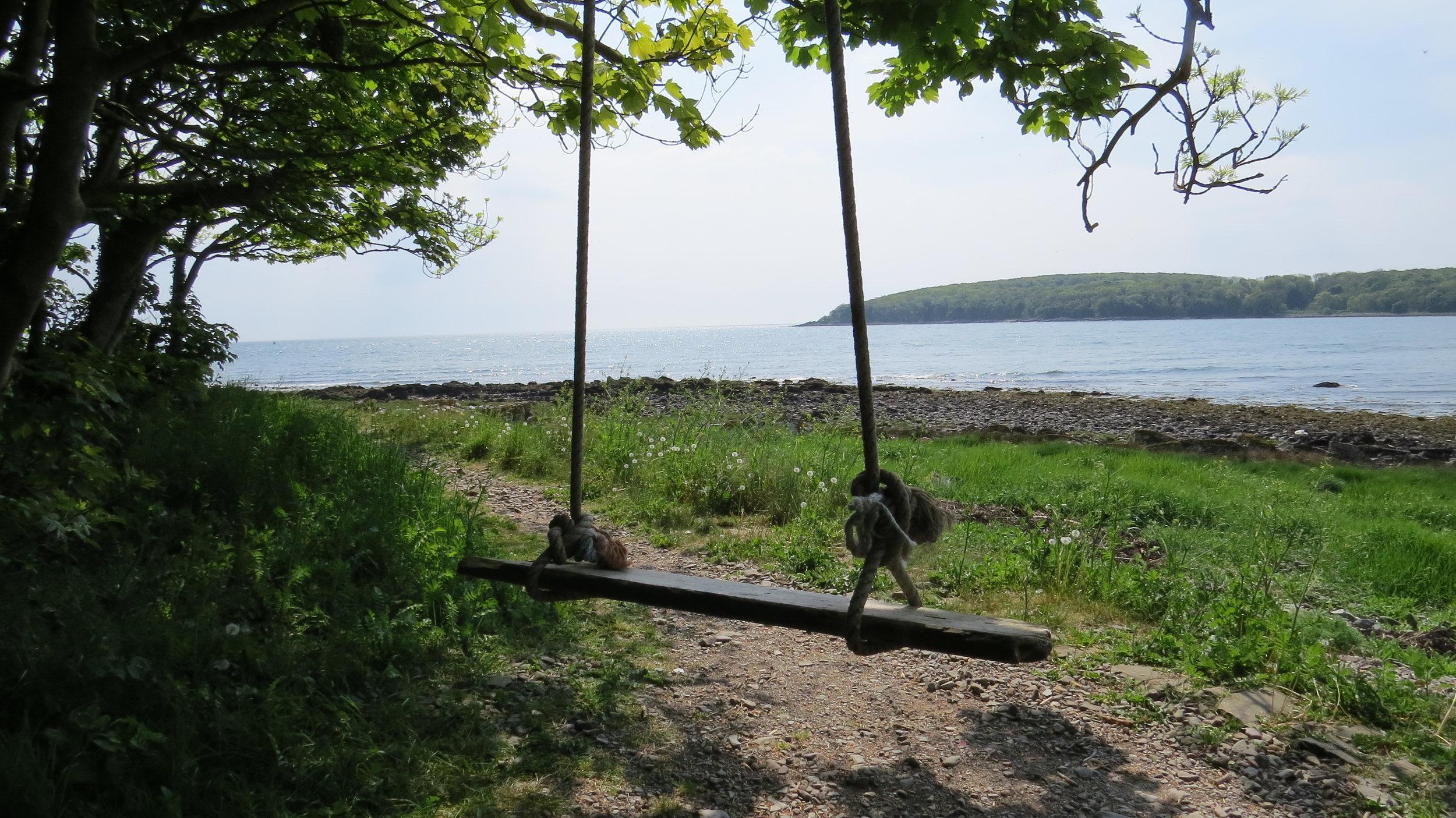 Swing in Rigg Bay