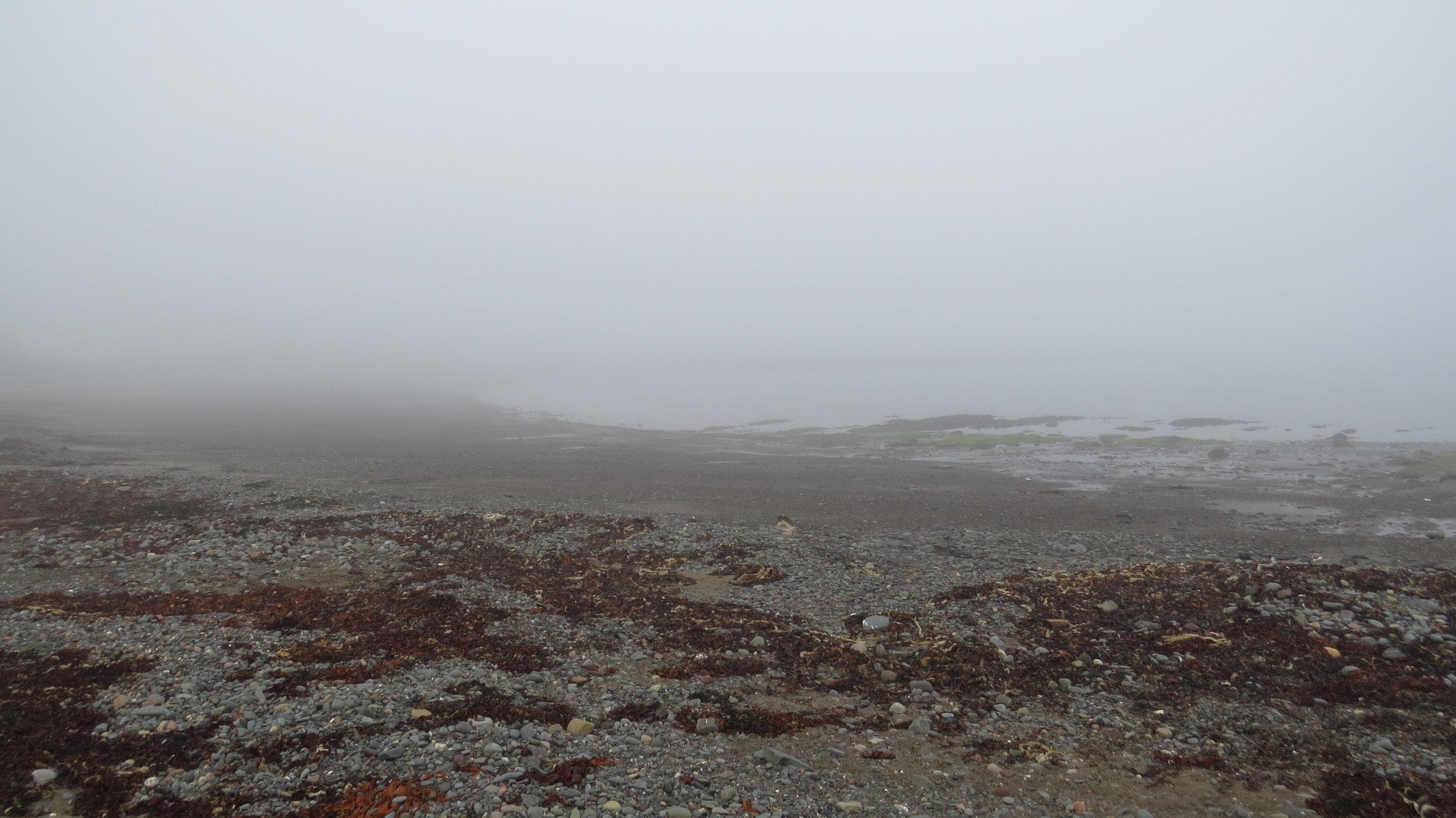 Foggy Ballantrae Bay