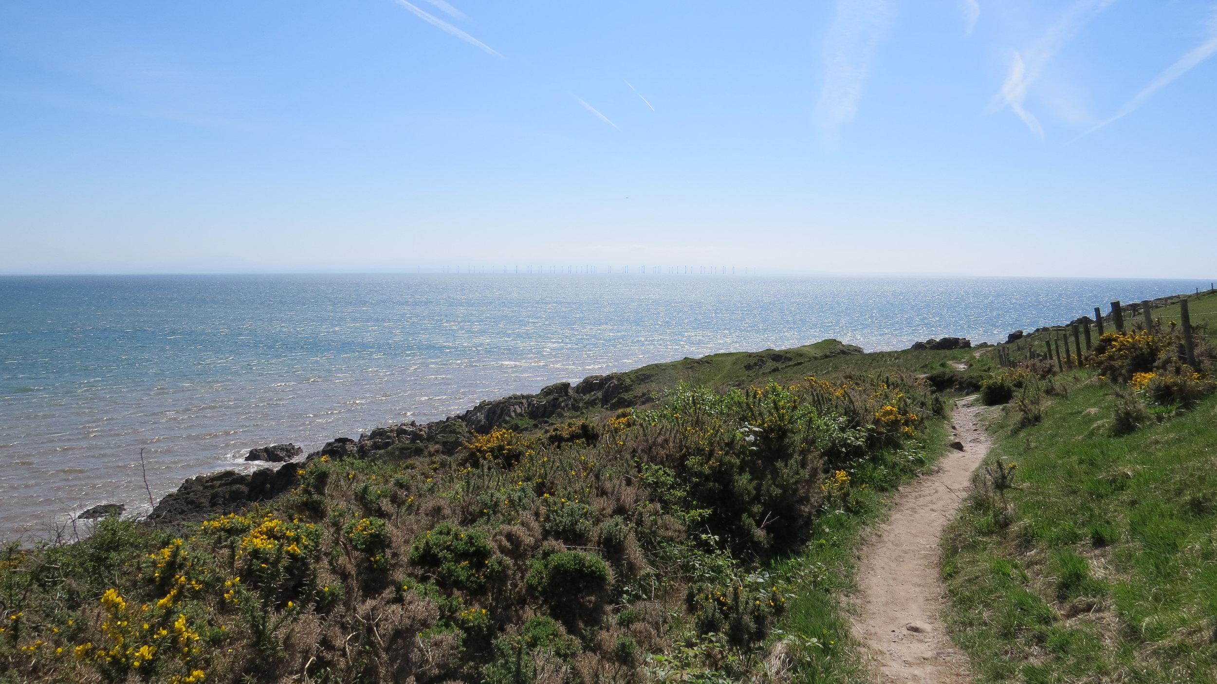 Cliff Walking near Balcary Point