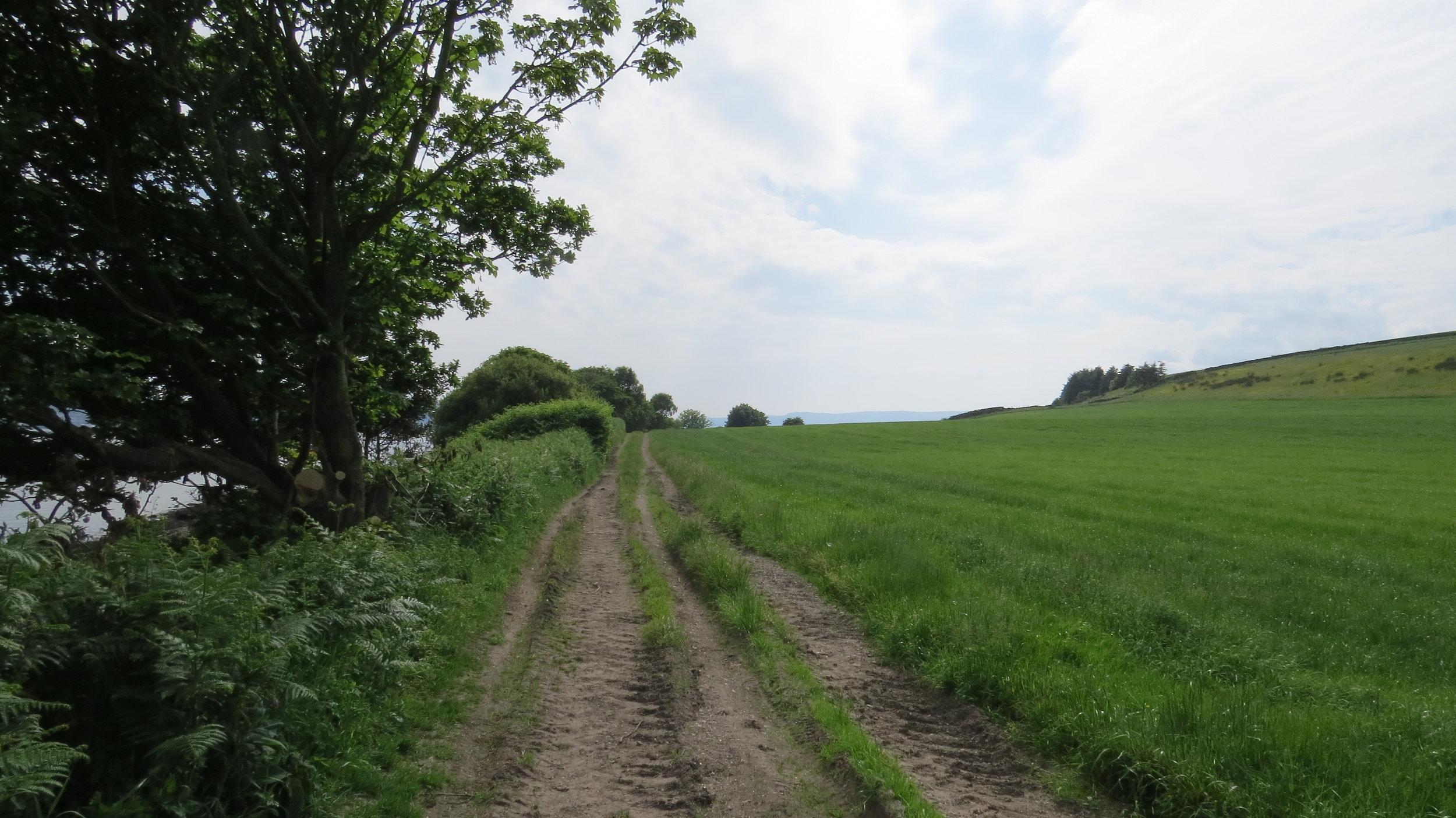Farm Track Walking
