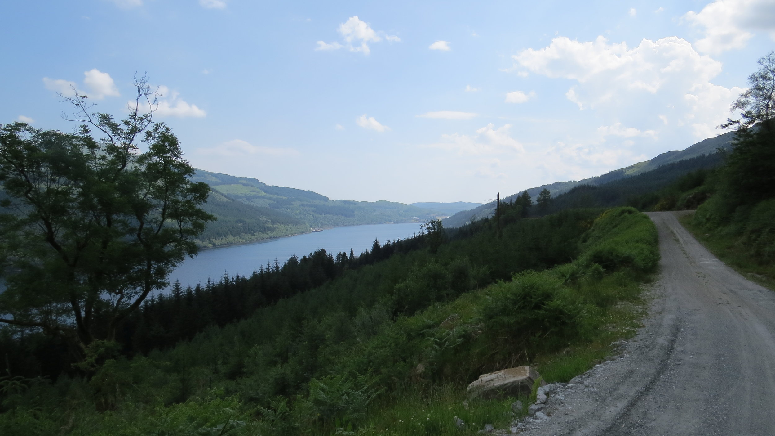 Loch Long from Forest Track