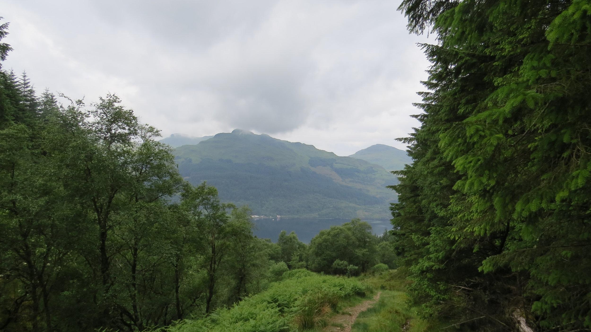 Looking towards Loch Goil
