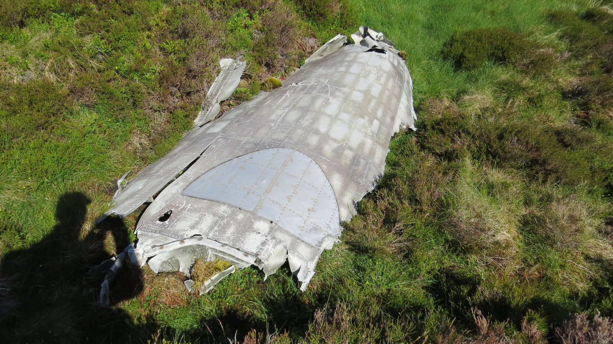 Part of a Plane Wreck