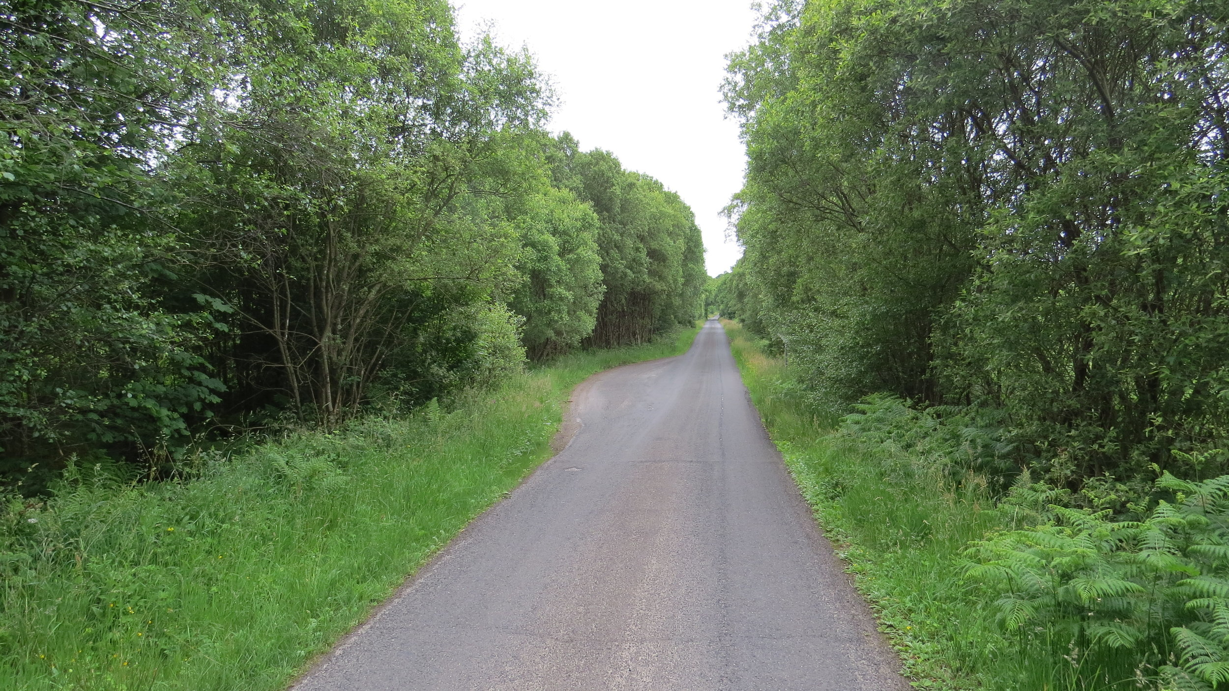 Road Walking I