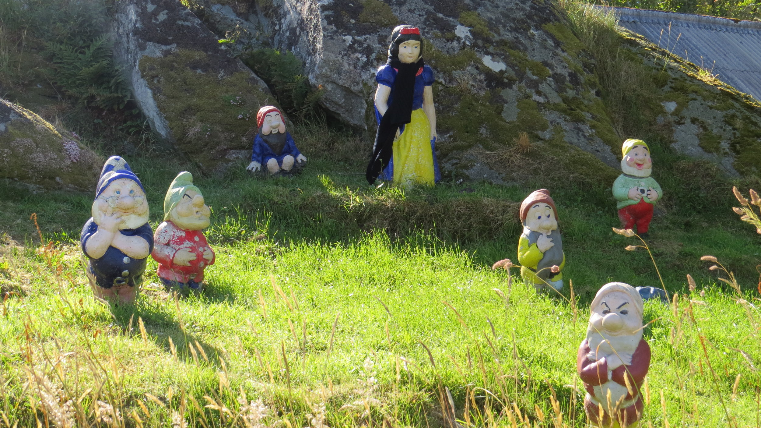 Snowwhite and the 7 Dwarfs