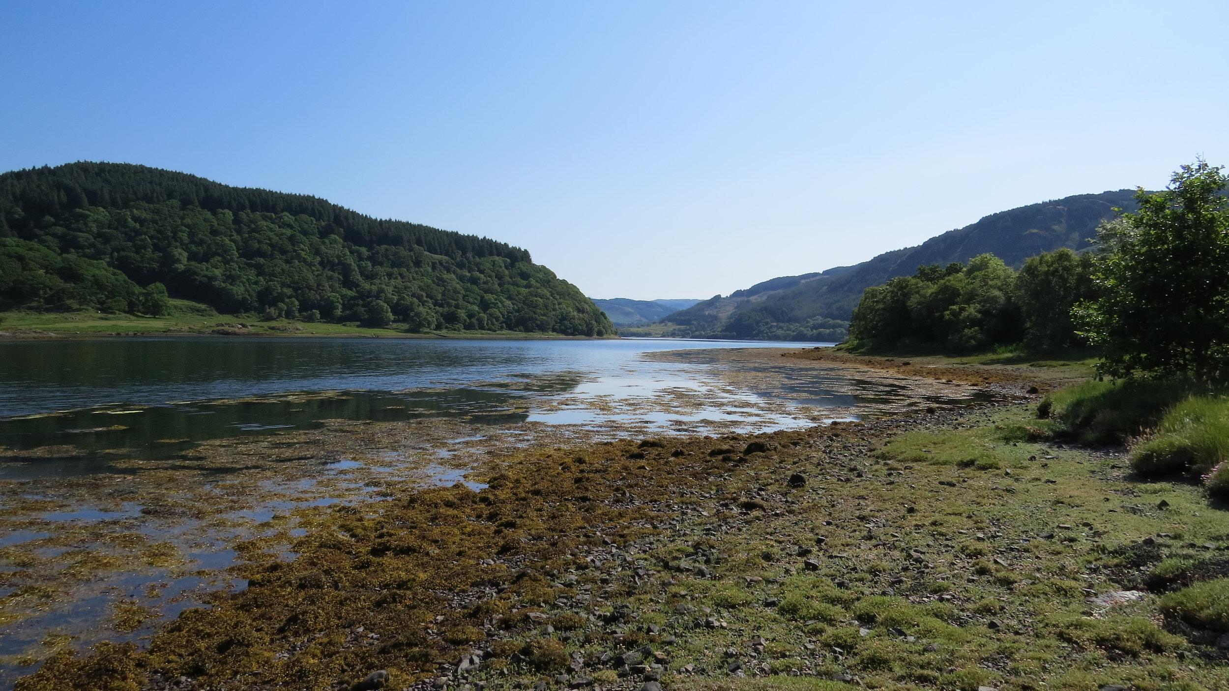 Walking along Loch Feochan