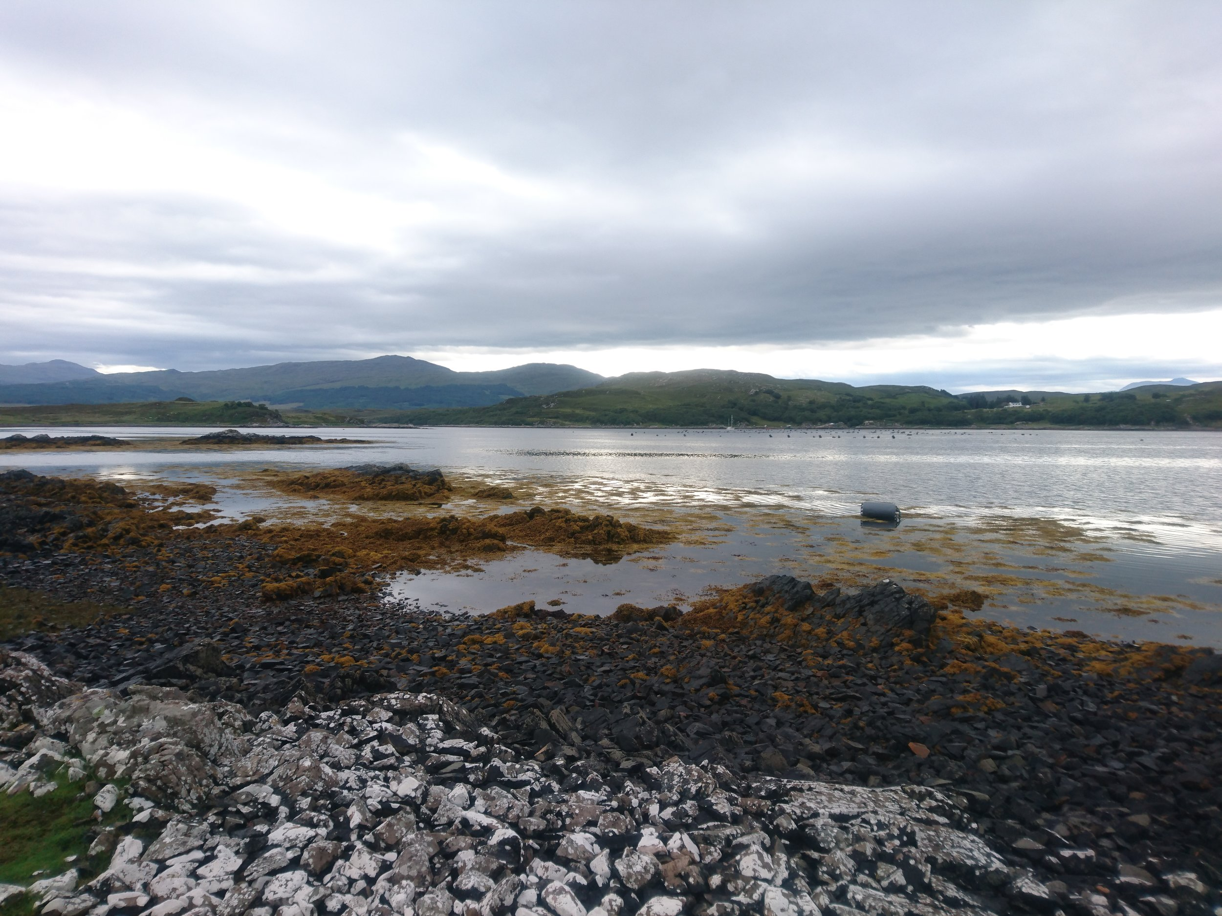 Loch Foreshore
