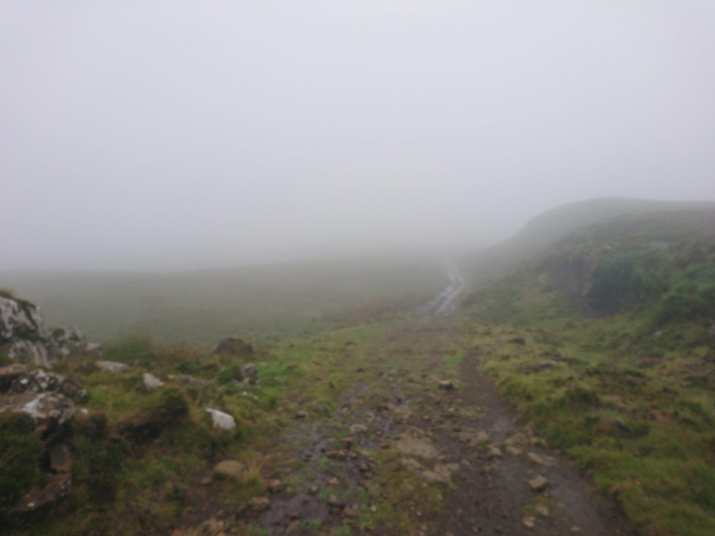 Gravel Track into the Fog