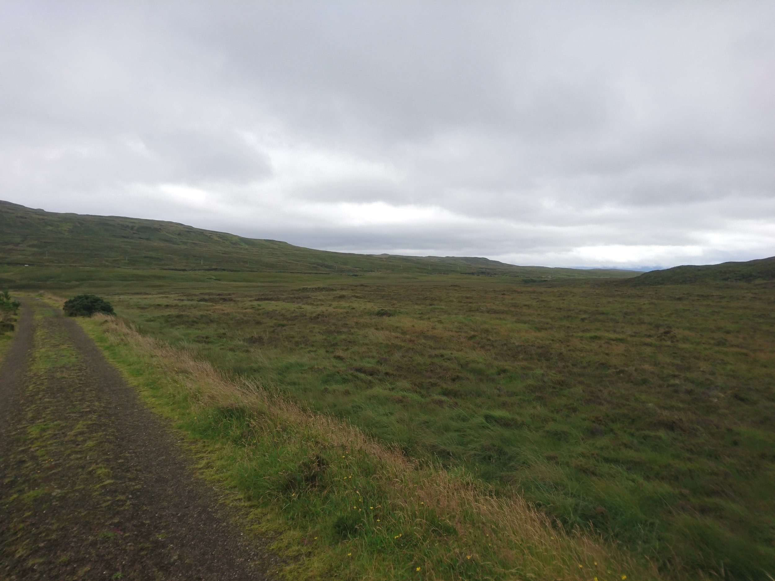 Track through the Boggy Lands
