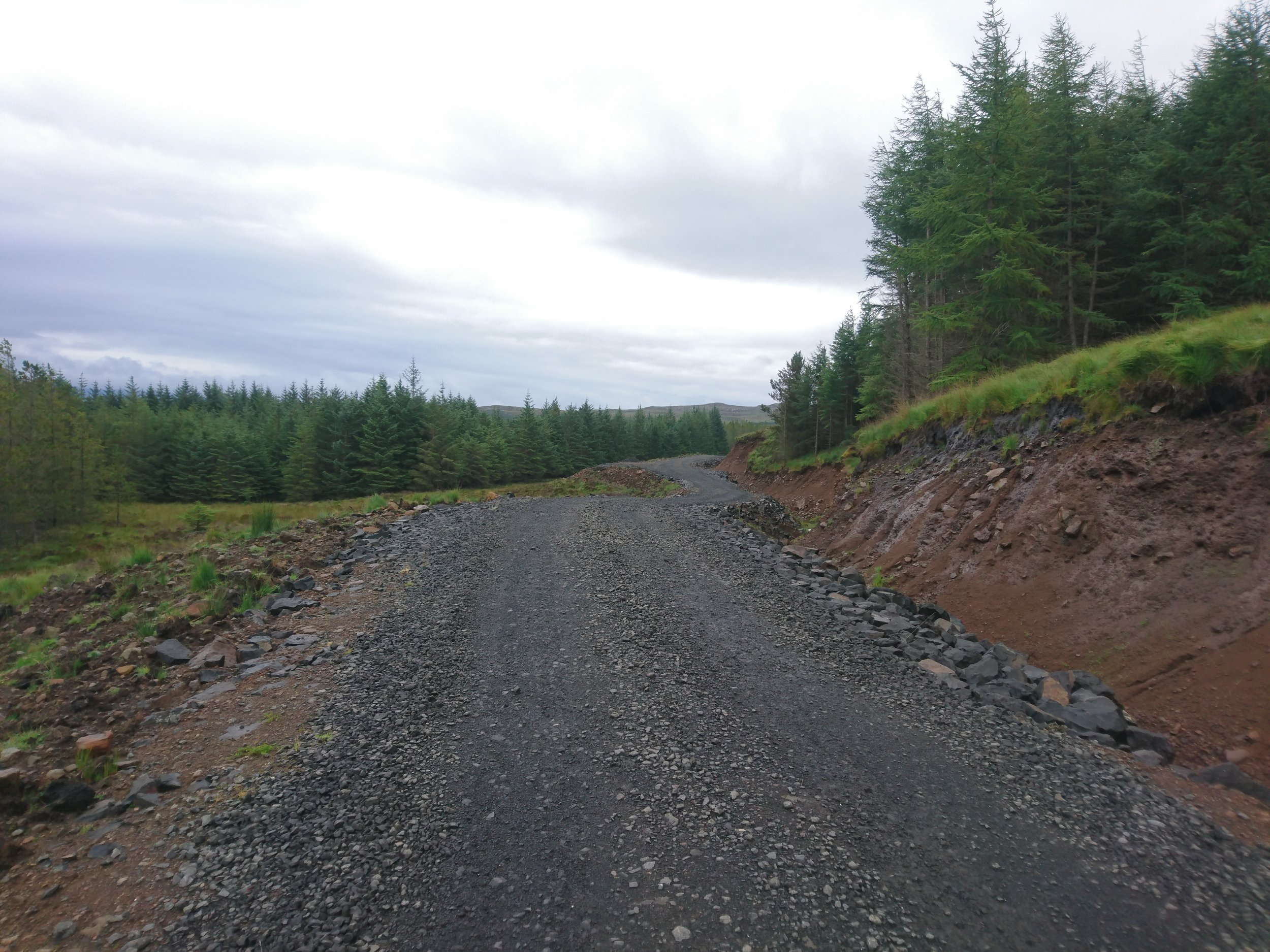 Forest Track Extension