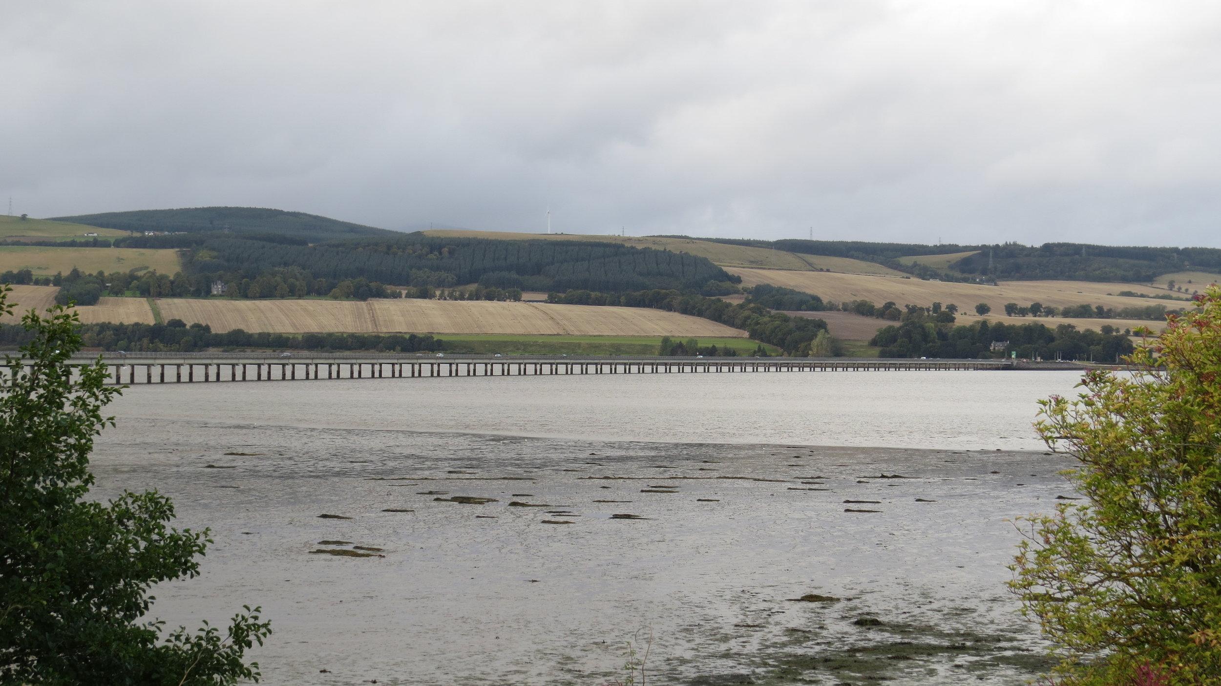 Cromarty Bridge from near Tent