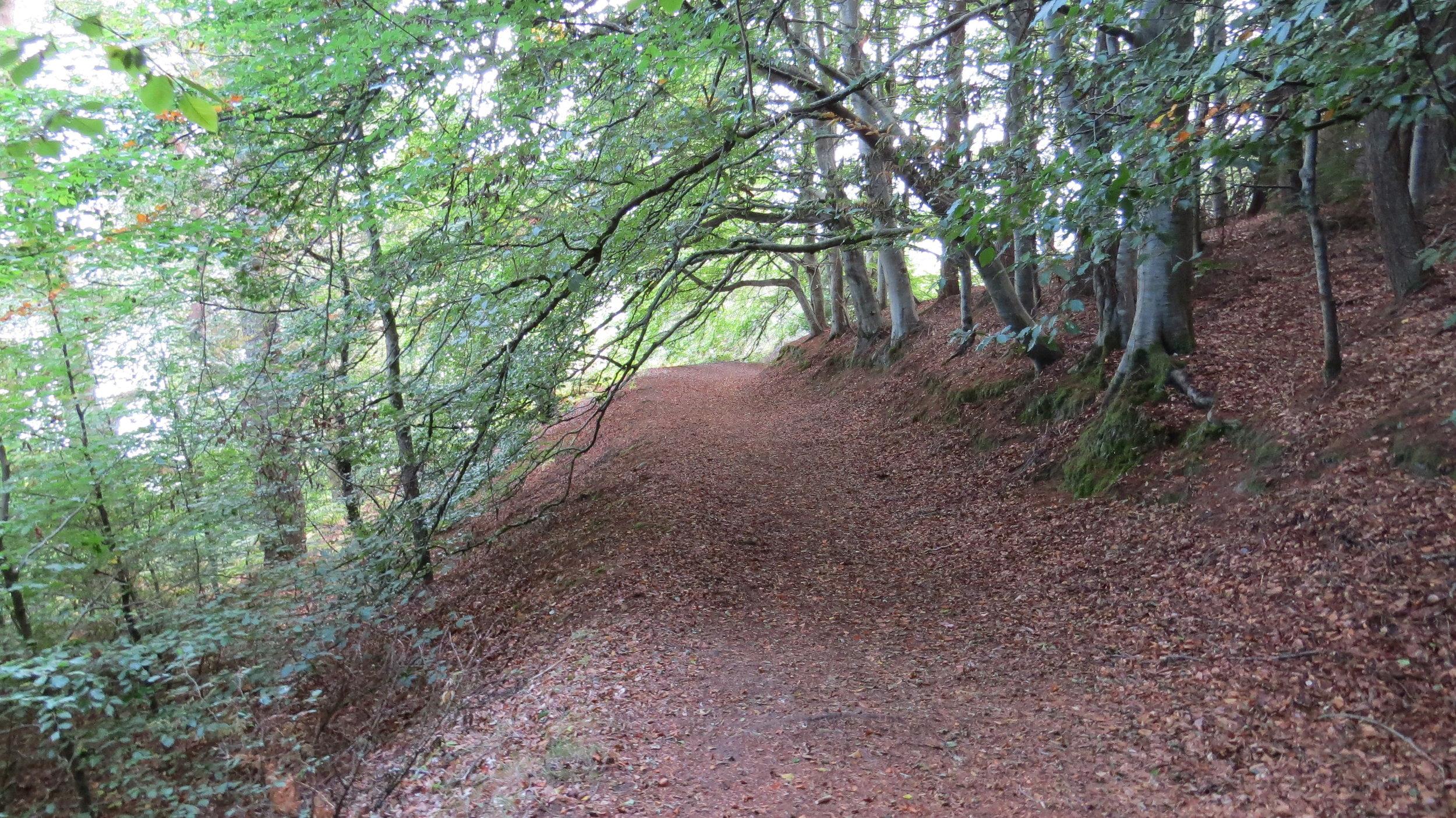 Track to Craigton