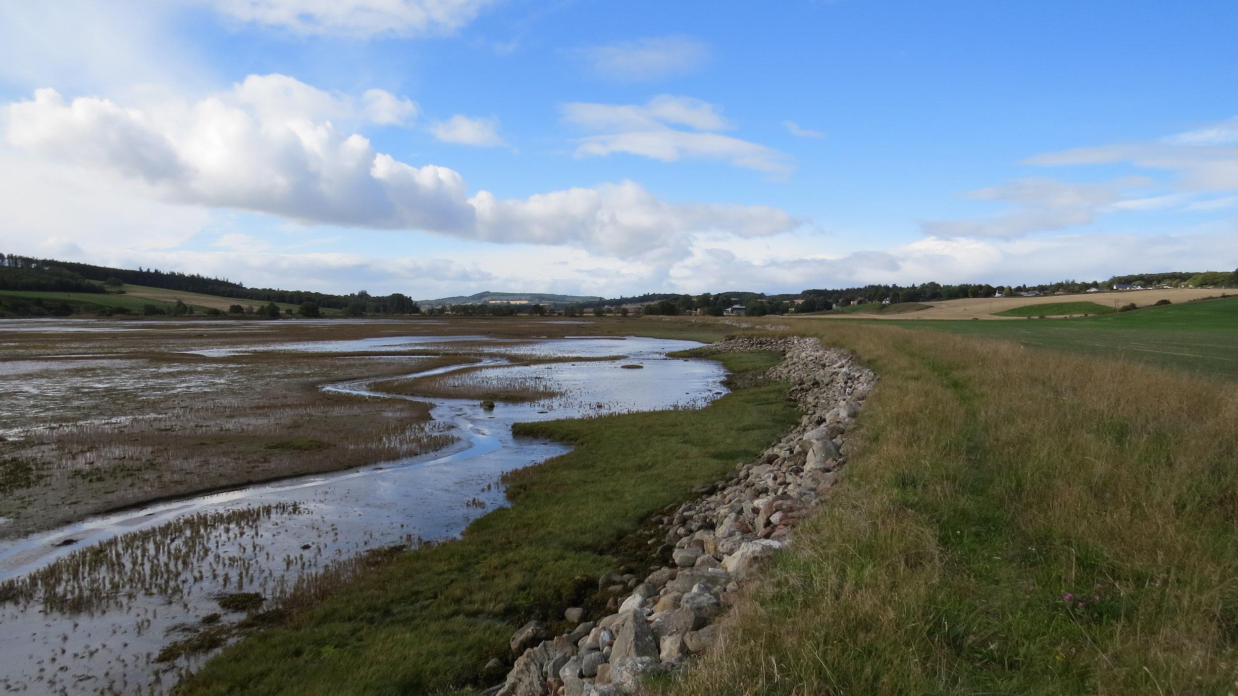Embankment to Munlochy