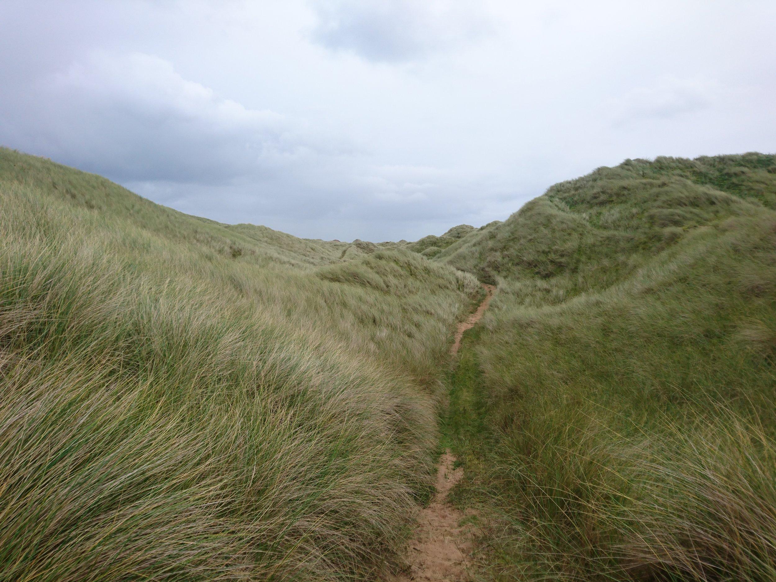 Path through the Dunes