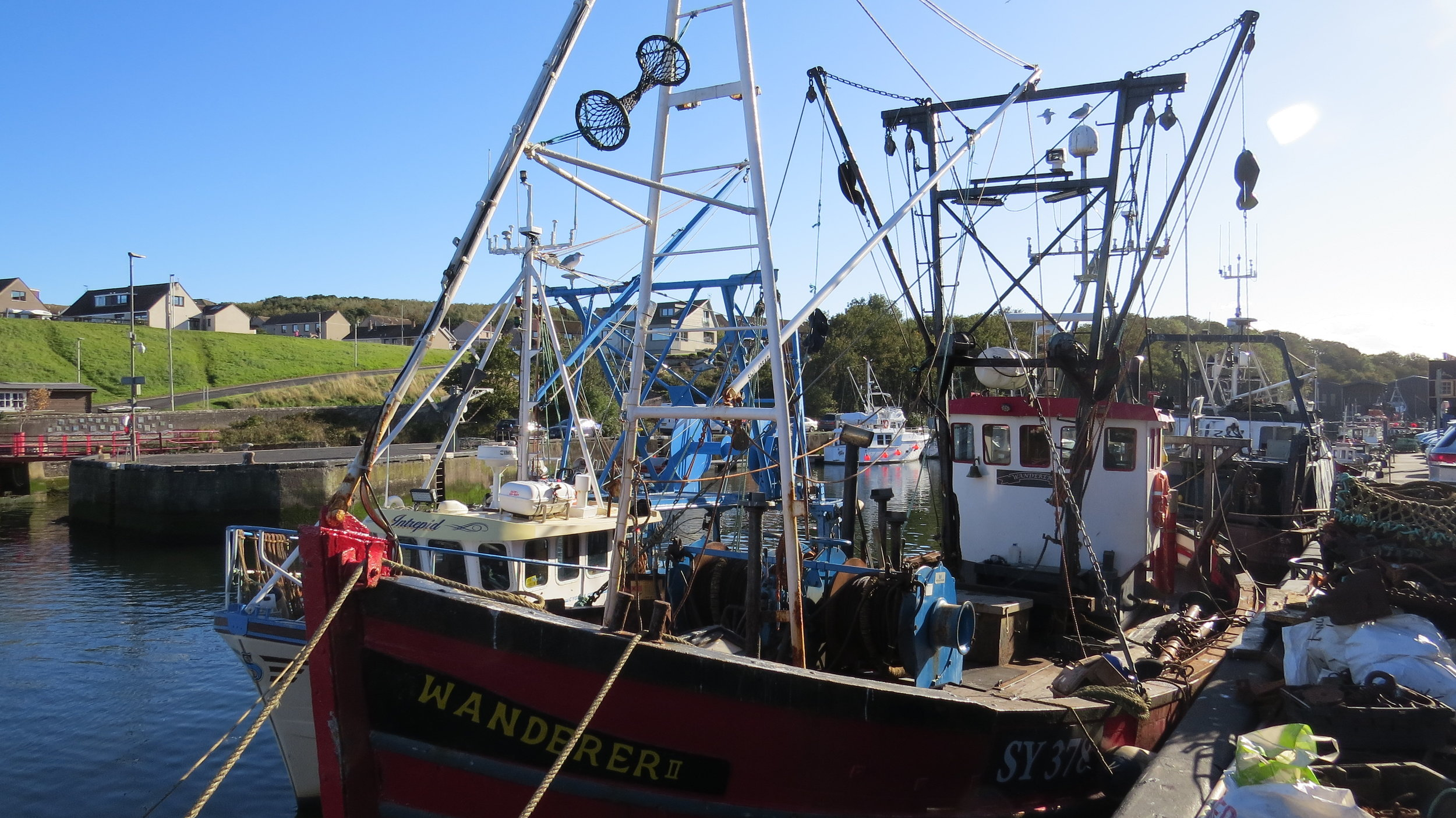 Fishing Boat Eyemouth