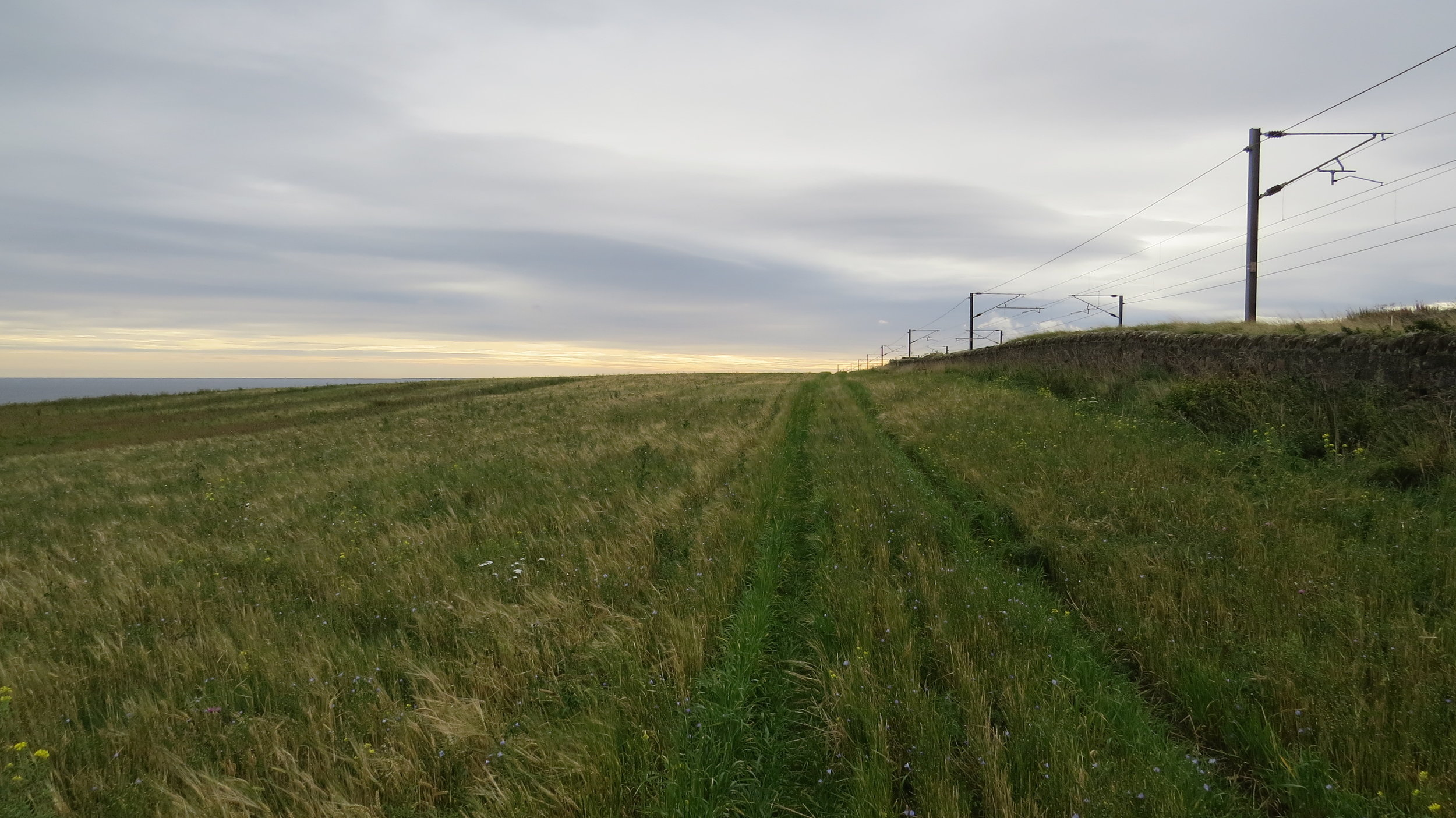 Track by the Railway