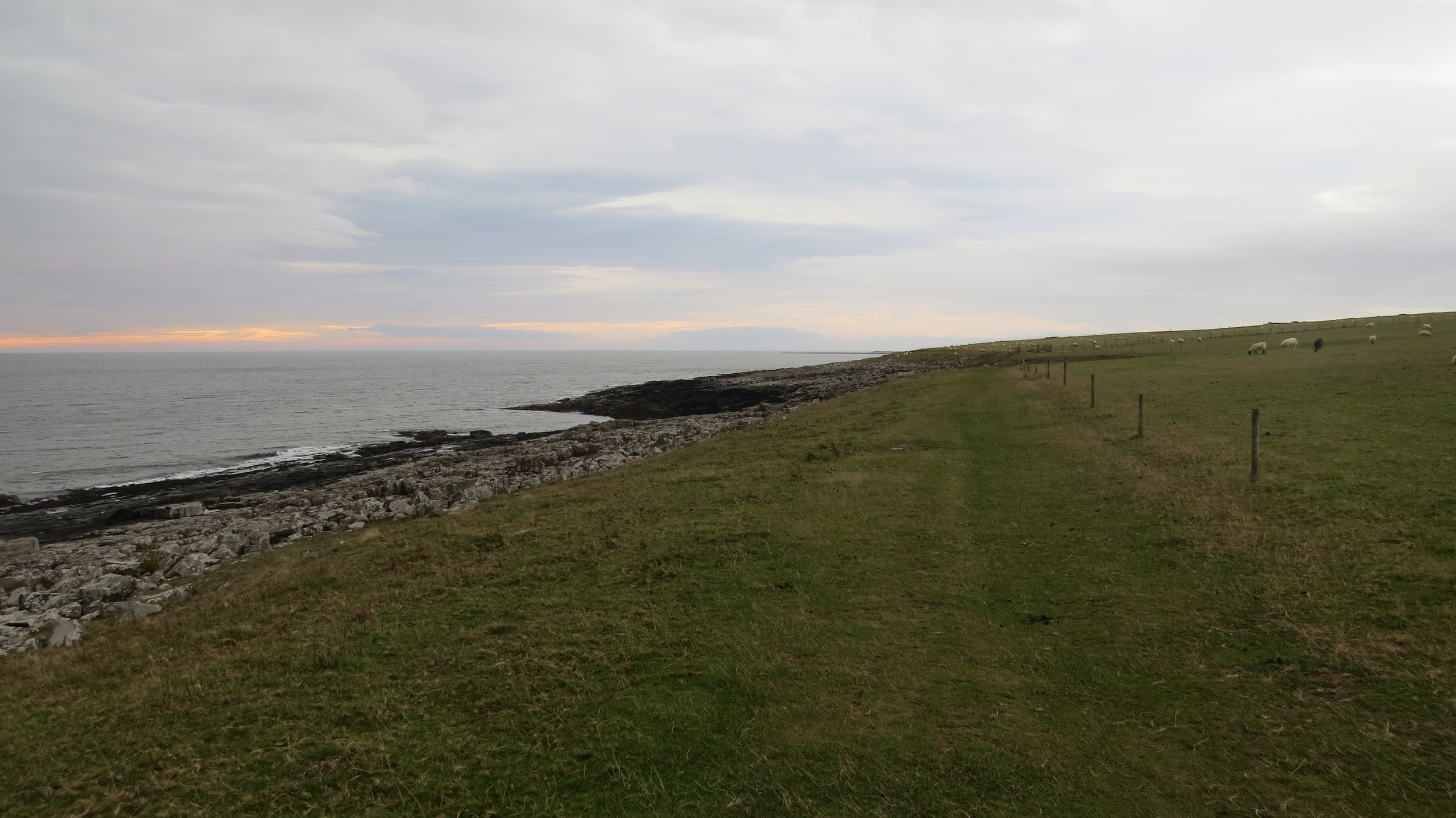 Coast Path from Craster