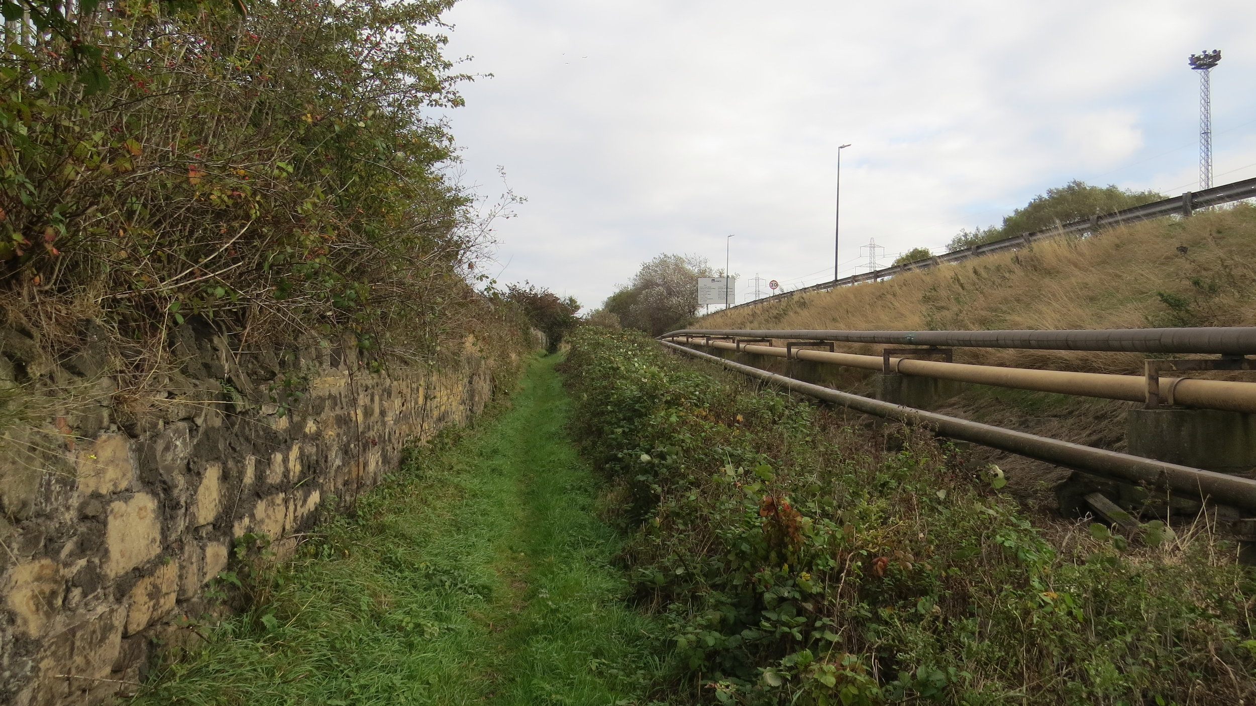 Path out of Middlesbrough II